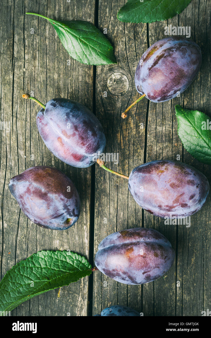 Fresh plums from garden with leaves. Top view. - Stock Image