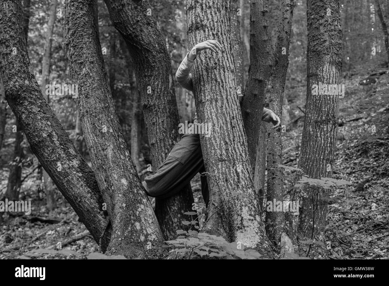 CI dance with tree - Stock Image