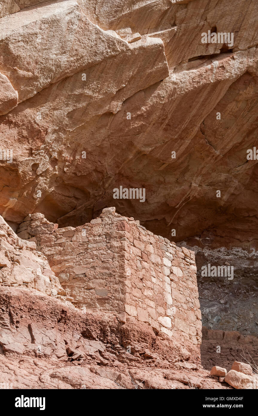 Anasazi ruins in a side canyon, Sand Canyon Trail, Canyons of the Ancients National Monument, Colorado. - Stock Image