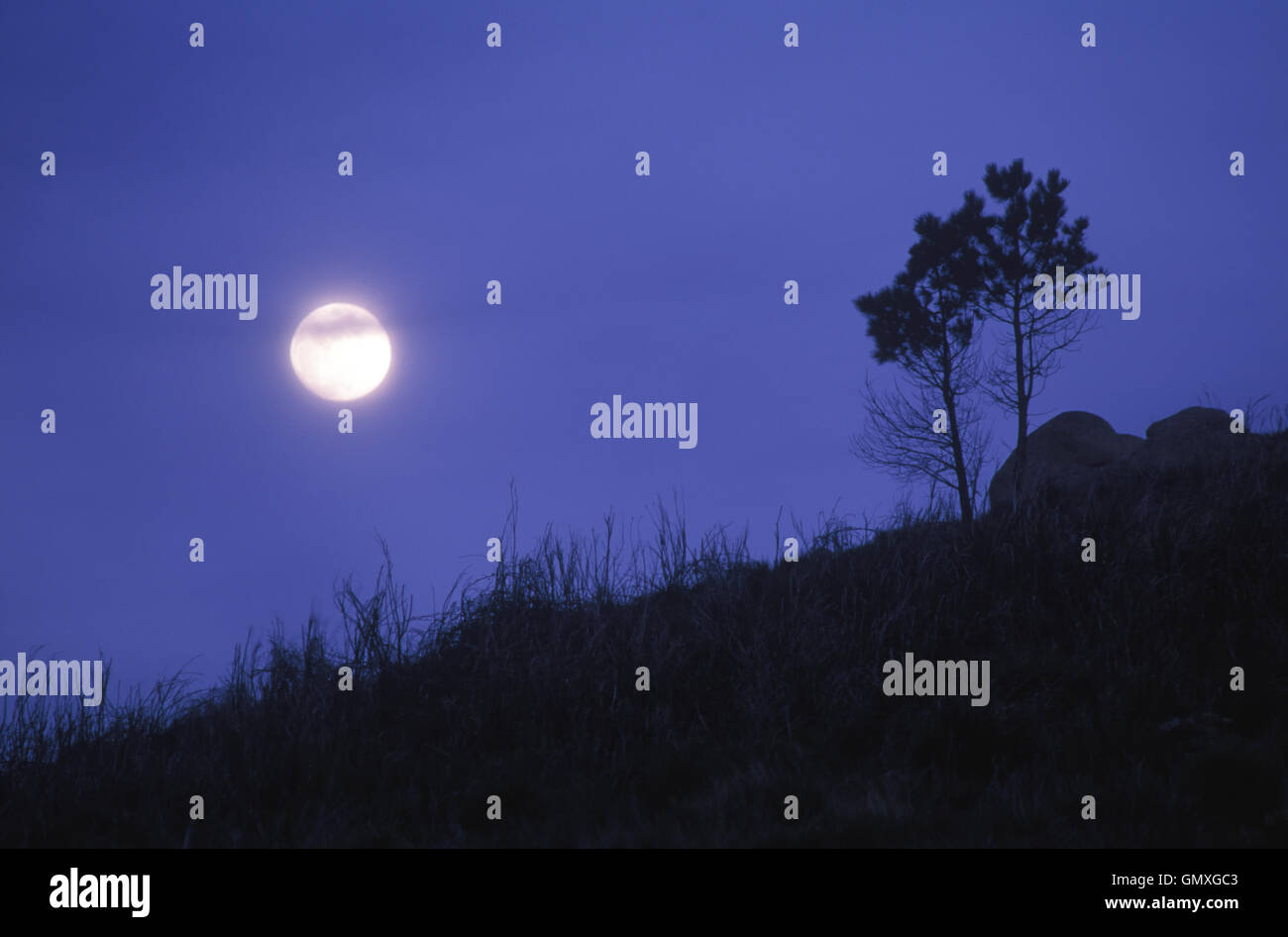 Mountain landscape at night with full Moon. Malveira, Portugal - Stock Image