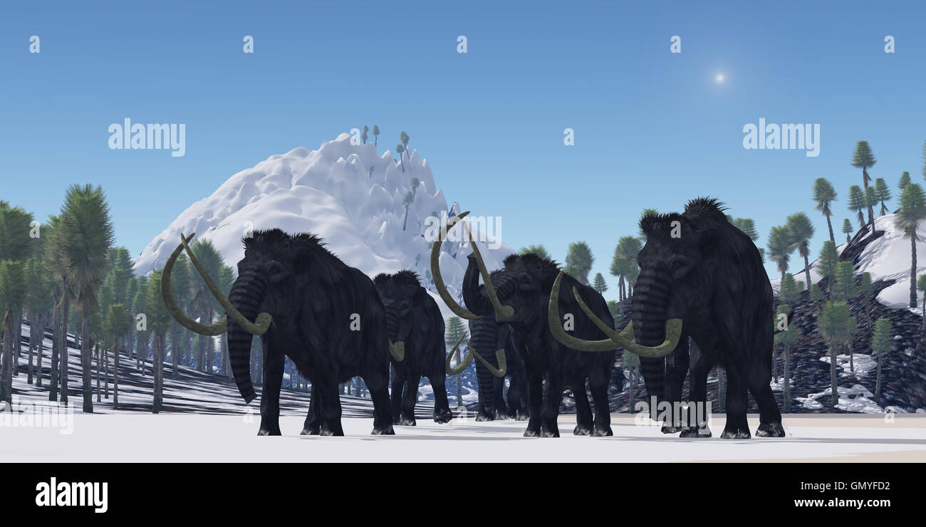 Woolly Mammoth - Stock Image