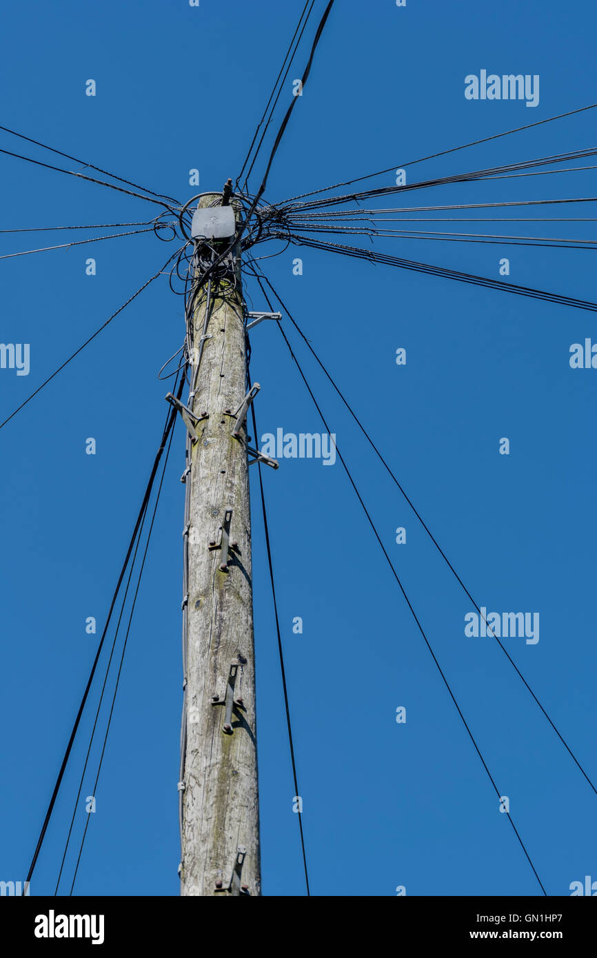 BT / Telephone cabling / telegraph pole - as visual metaphor for concept of 'distribution', broadband,  - Stock Image