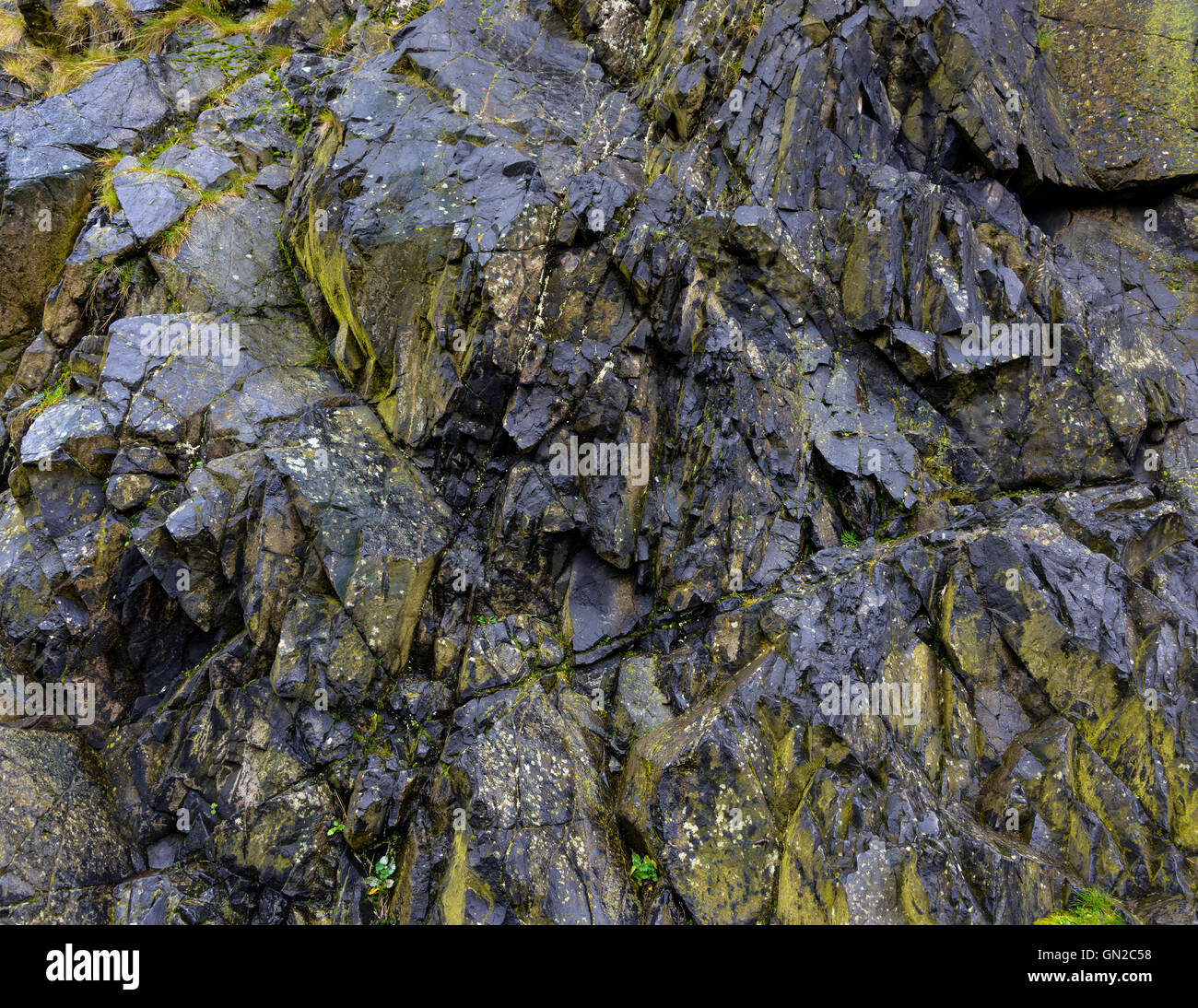 Black rock texture and green moss - Stock Image