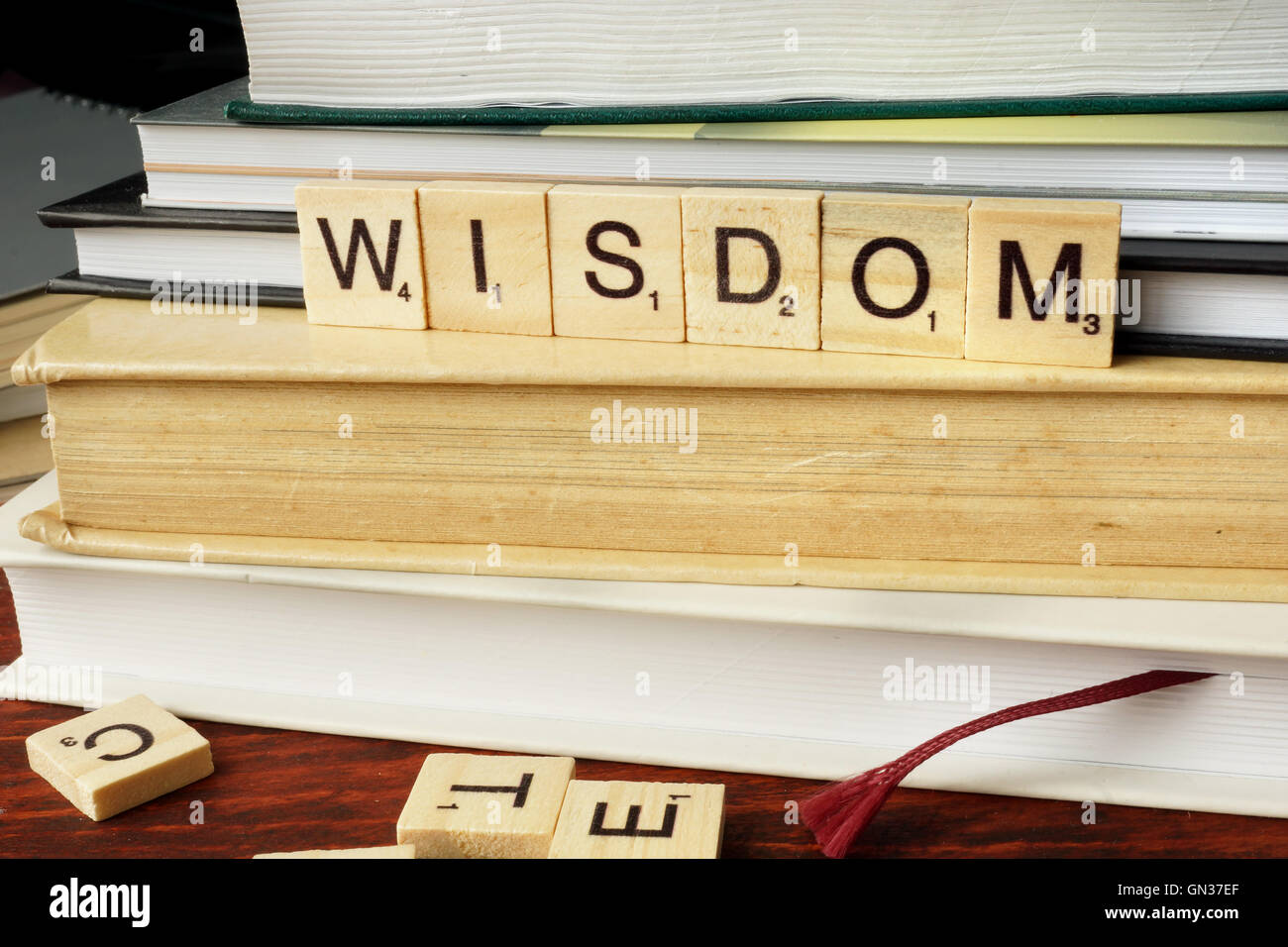 Word Wisdom from wooden blocks with letters. - Stock Image