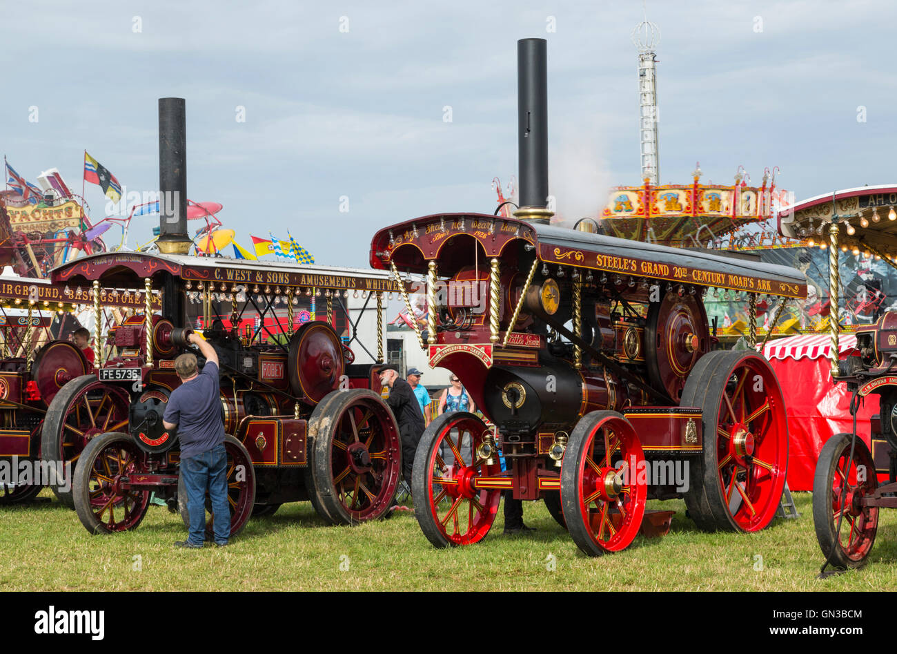 A superb line up of showmans engines at 2016 steam fair in blandford dorset - Stock Image