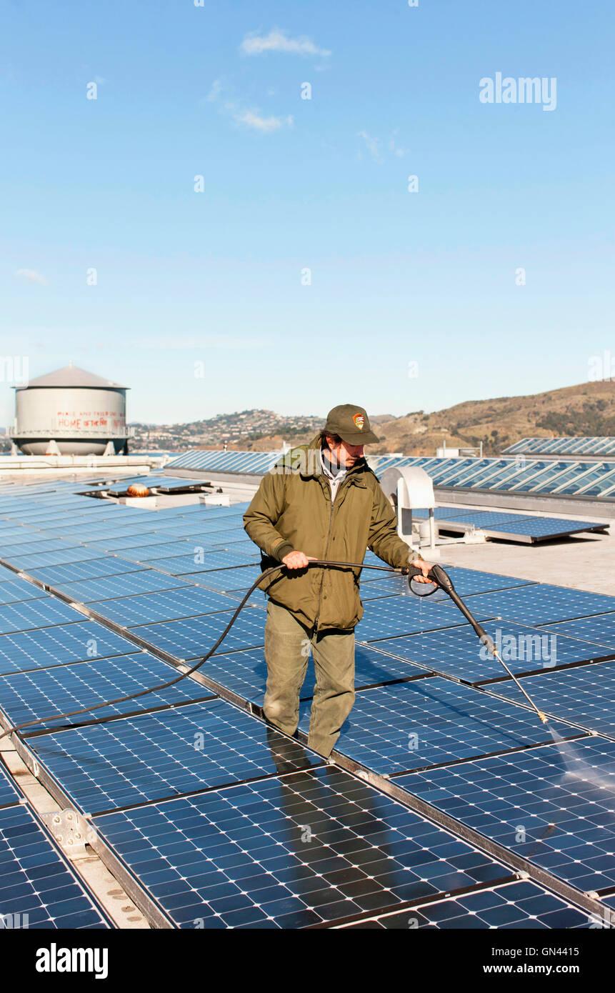 Ray Katsane a National Park Service employee power washes the solar panels  at Alcatraz Island.  The longtime home - Stock Image
