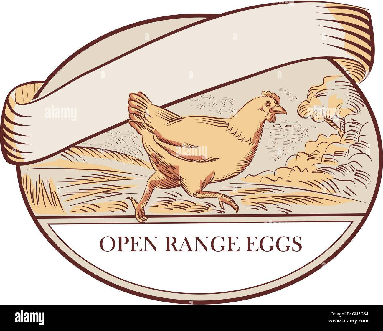 Hen Running Open Range Eggs Oval Drawing - Stock Vector