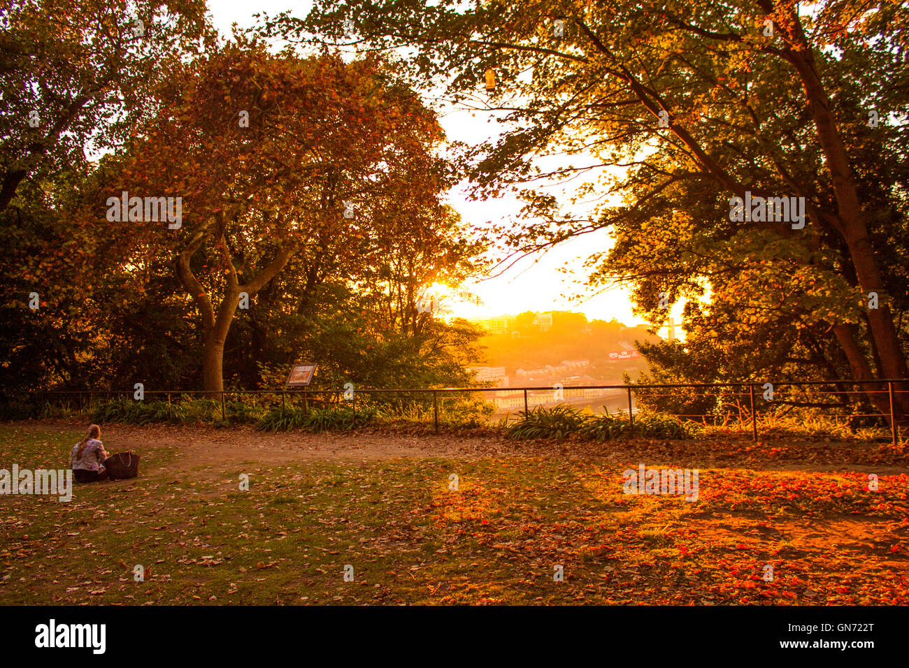 Sunset shot in a public garden in Porto, Portugal. A girl, sited in the grass, enjoys the warm orange and yellow - Stock Image