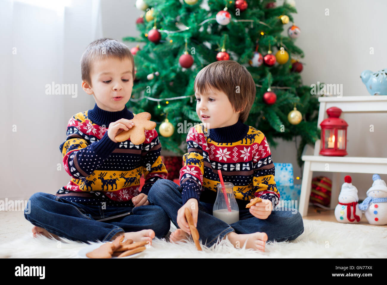 Two adorable children, boy brothers, eating cookies and drinking milk at home, Christmas decoration behind then, - Stock Image