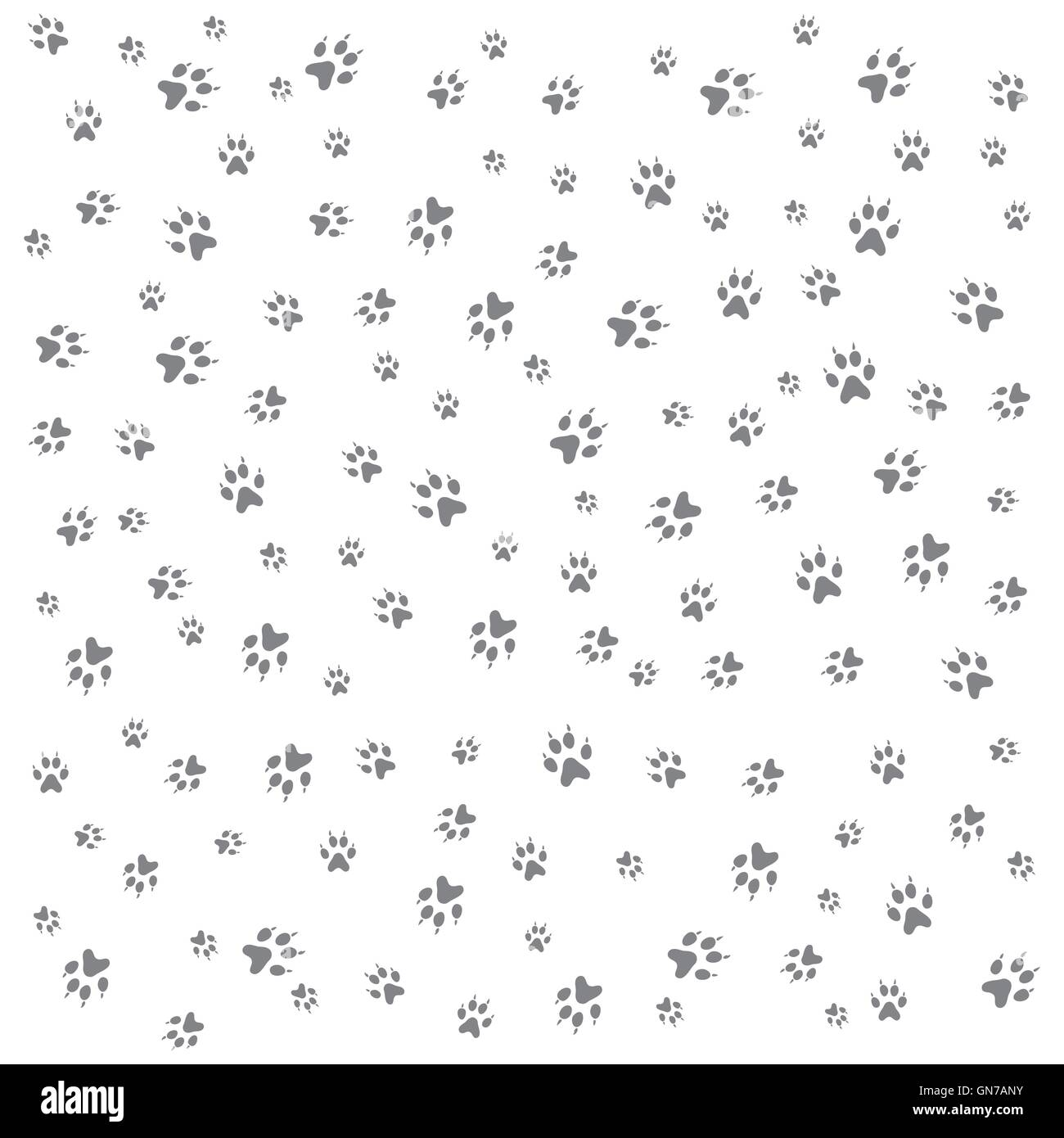 Nice picture of wild animal traces on a white background - Stock Image