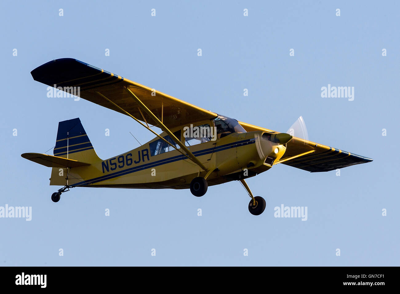 American Champion Citabria Aurora 7ECA (N596JR) lands at Palo Alto Airport, Palo Alto, California, United States - Stock Image