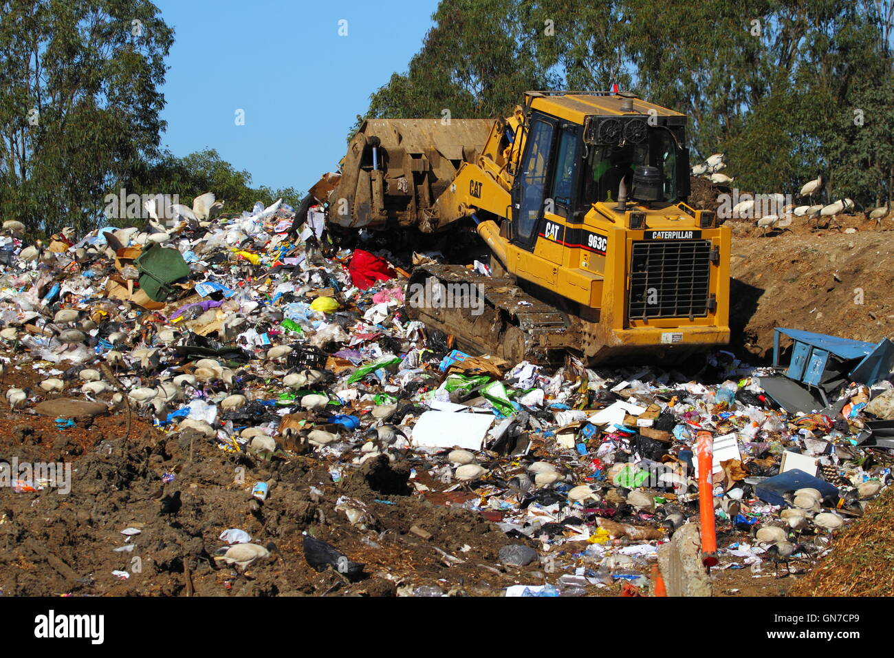 A Caterpillar 963C bulldozer pushes trash rubbish at a tip - or waste management facility - in NSW, Australia. - Stock Image
