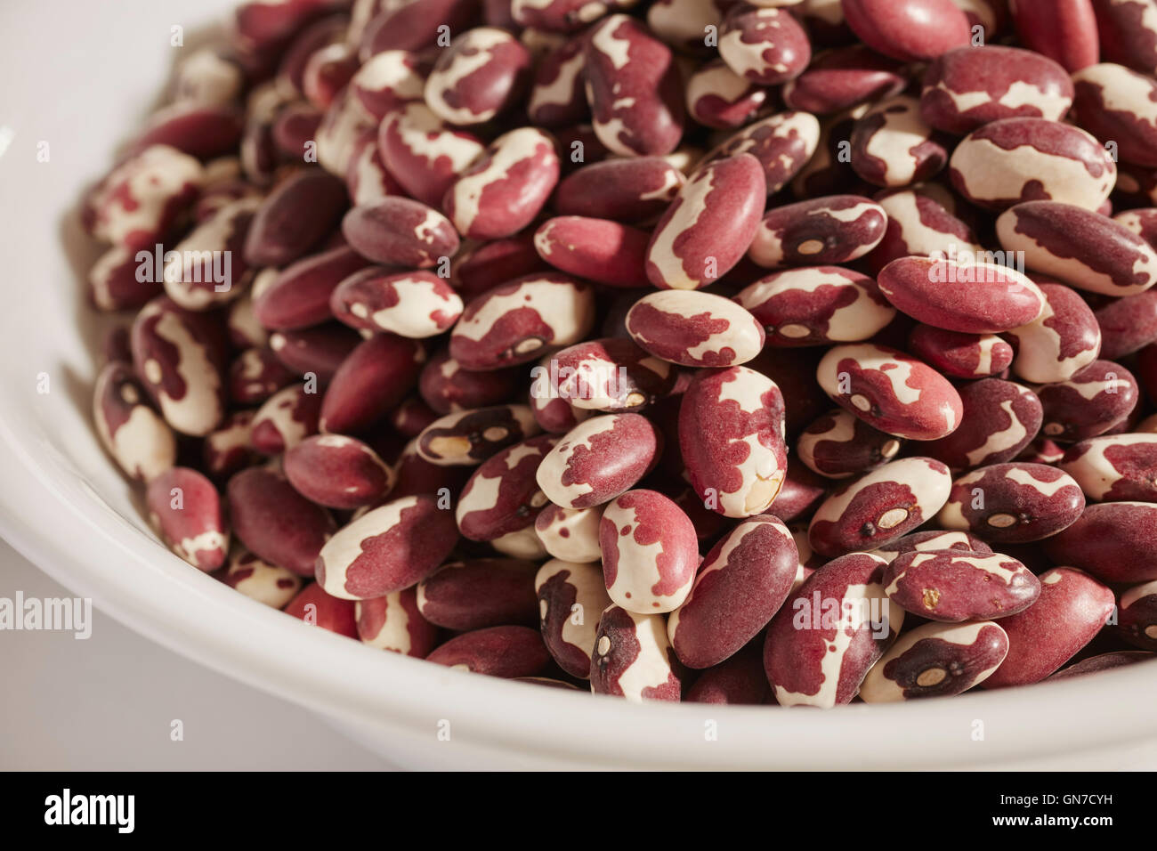dried Anasazi beans, a traditional Native American food from Arizona, USA - Stock Image