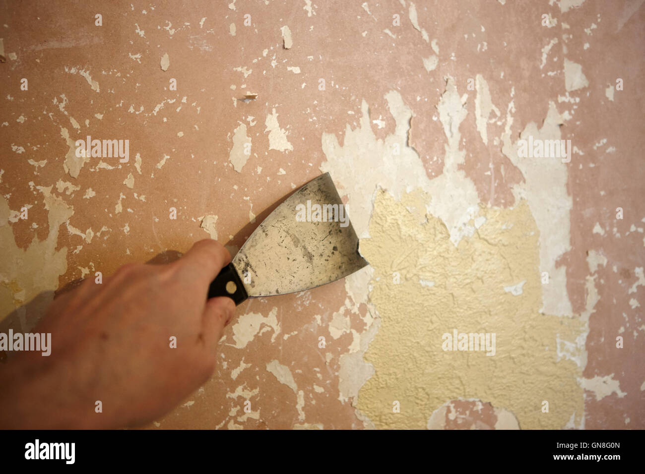 mans hand stripping paint and wallpaper off a plaster wall - Stock Image