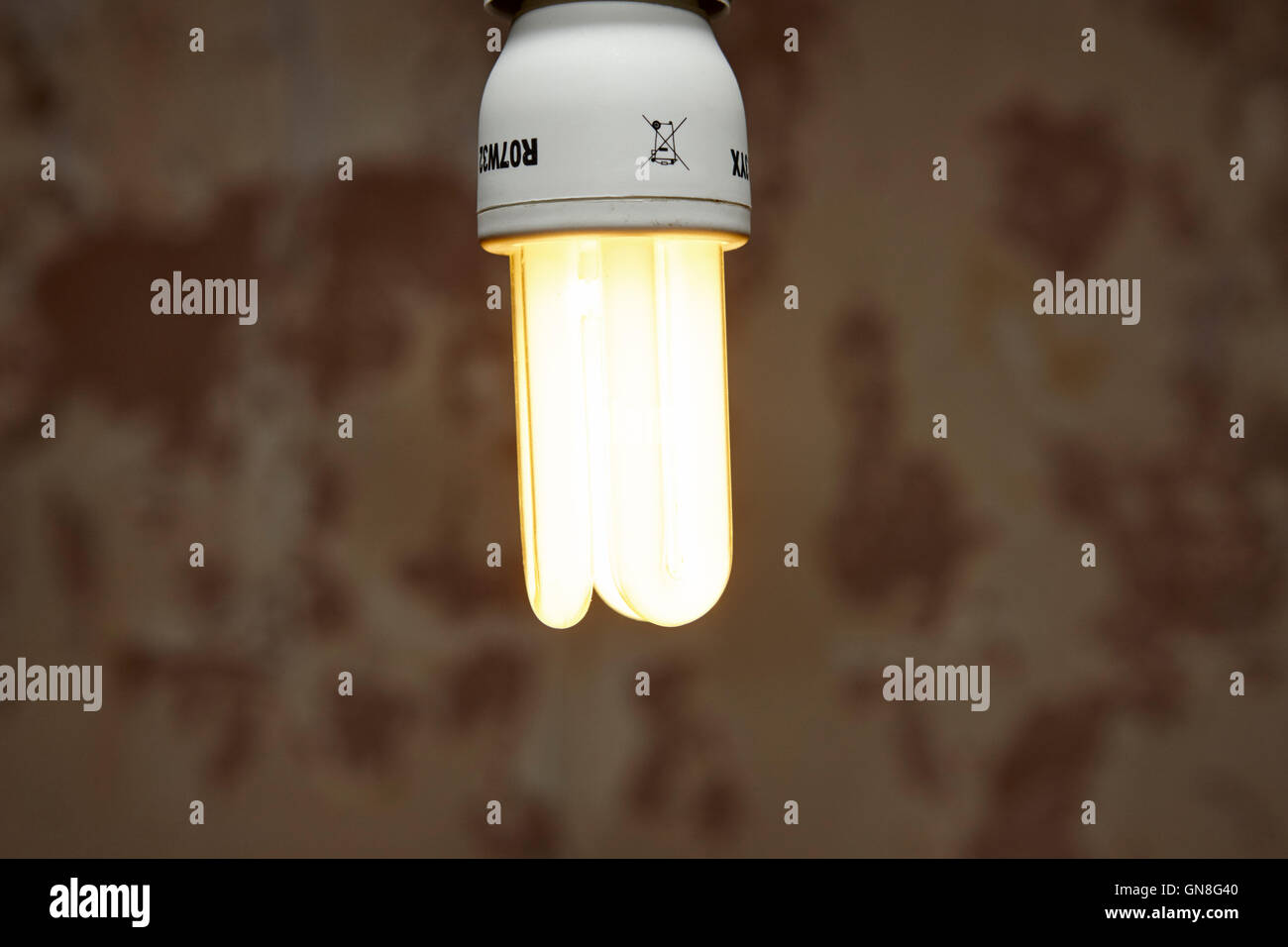 cfl compact fluorescent energy saving lightbulb - Stock Image