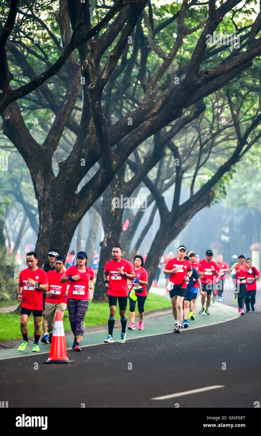 Runners passing below large trees in urban Banten, Indonesia. - Stock Image