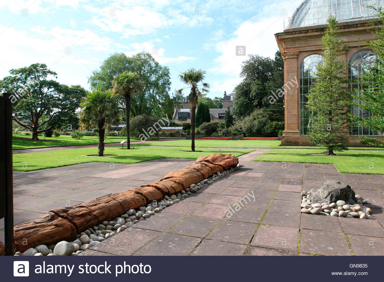 palm house at the royal botanic garden edinburgh, edinburgh, scotland, united kingdom - Stock Image