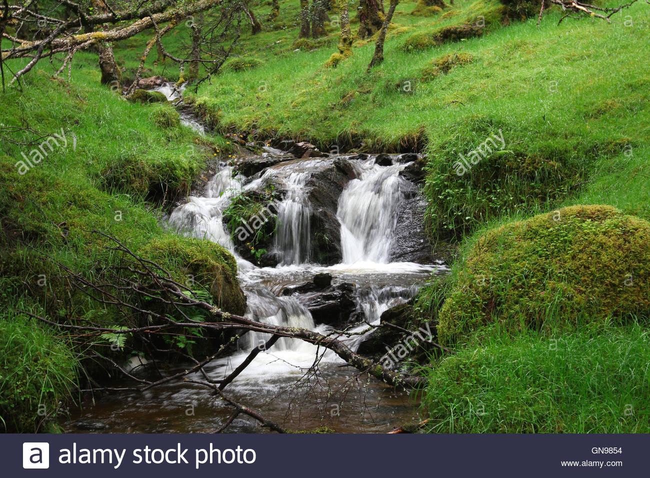 waterfall at glen lyon, perth and kinross, highlands, scotland, united kingdom Stock Photo