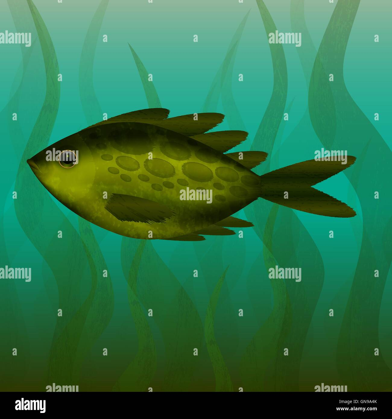 River fish. Under the water. Underwater plants. - Stock Vector