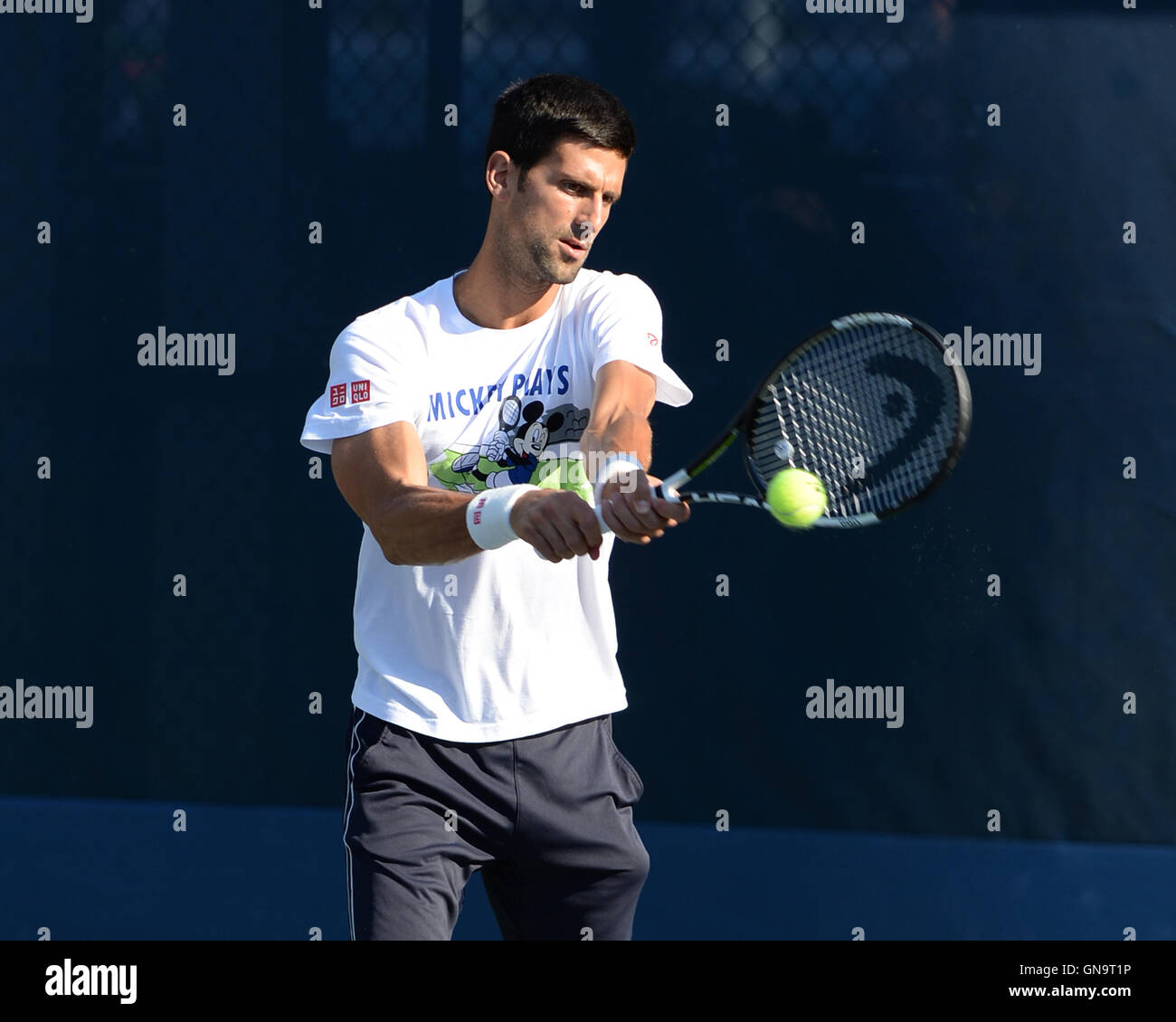 New York, USA. 28th Aug, 2016. Novak Djokovic on the practice court at the USTA Billie Jean King National Tennis - Stock Image