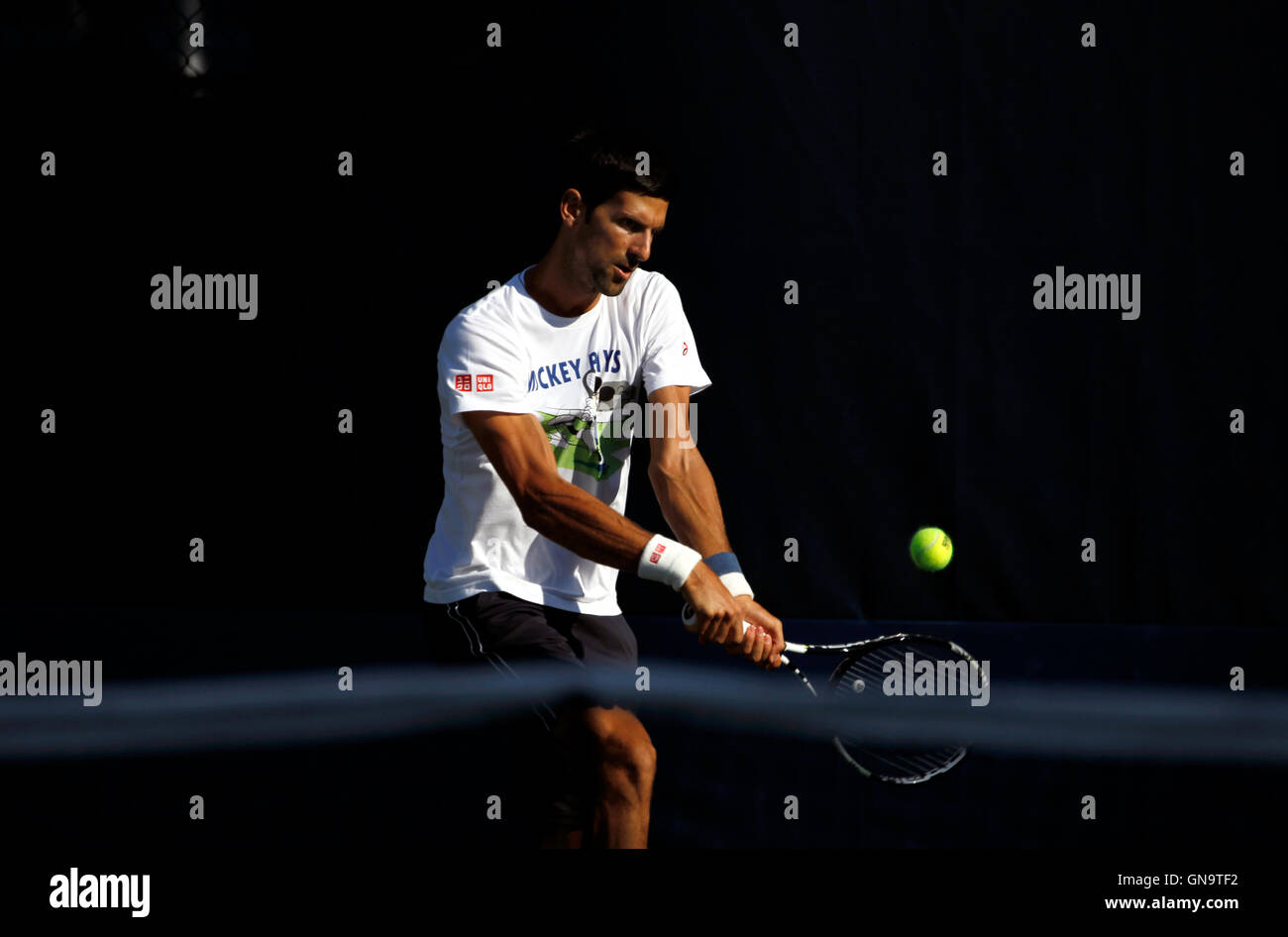 New York, United States. 28th Aug, 2016. Novak Djokovic during a practice session Sunday, August 28th, at the National - Stock Image