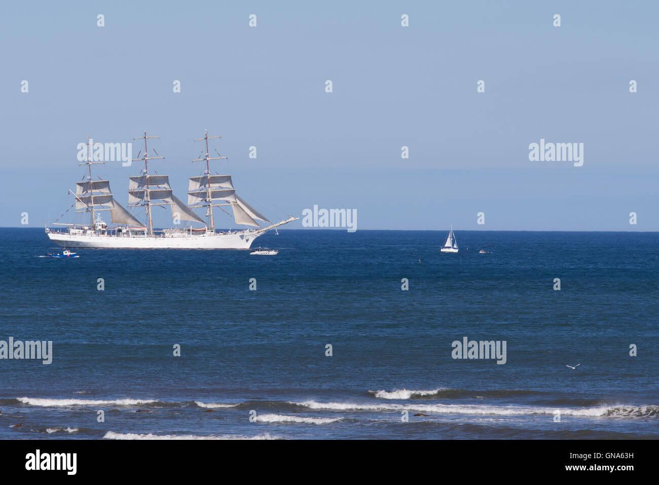 Whitley Bay, UK. 29th Aug, 2016.  North Sea Tall Ships Regatta, Blyth, 2016 sailing past Whitley Bay, Newcastle, - Stock Image