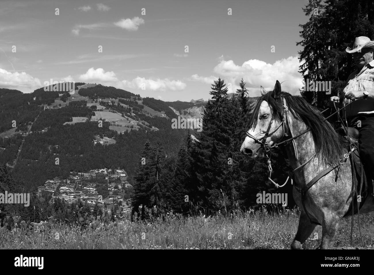 A black and white view in the French Alps with a horse and rider crossing the scene. Stock Photo