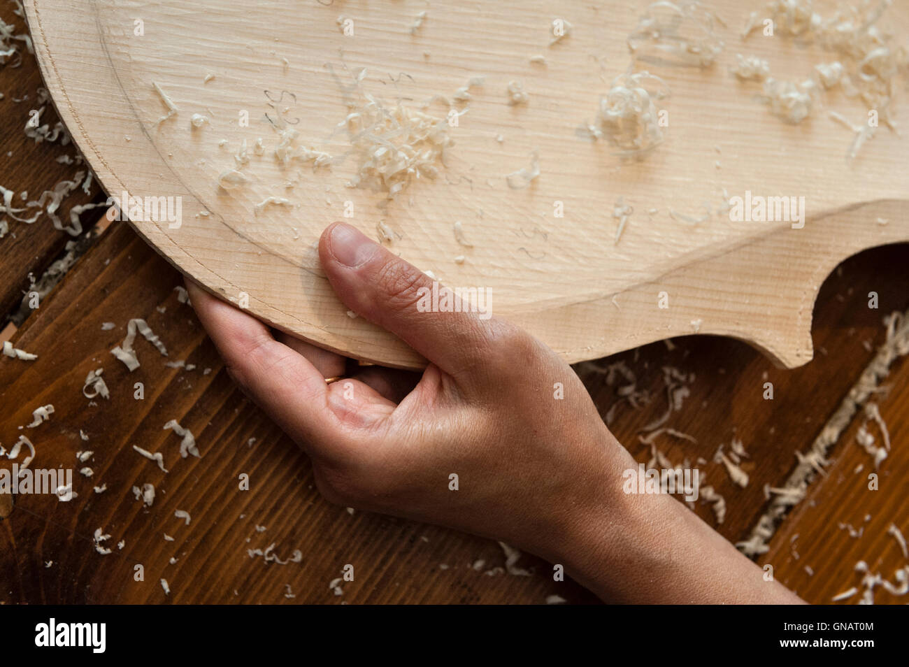 The Forest of Violins, Paneveggio, Italy. Giovanna Chittò, luthier (violin maker), shaping wood for a cello - Stock Image