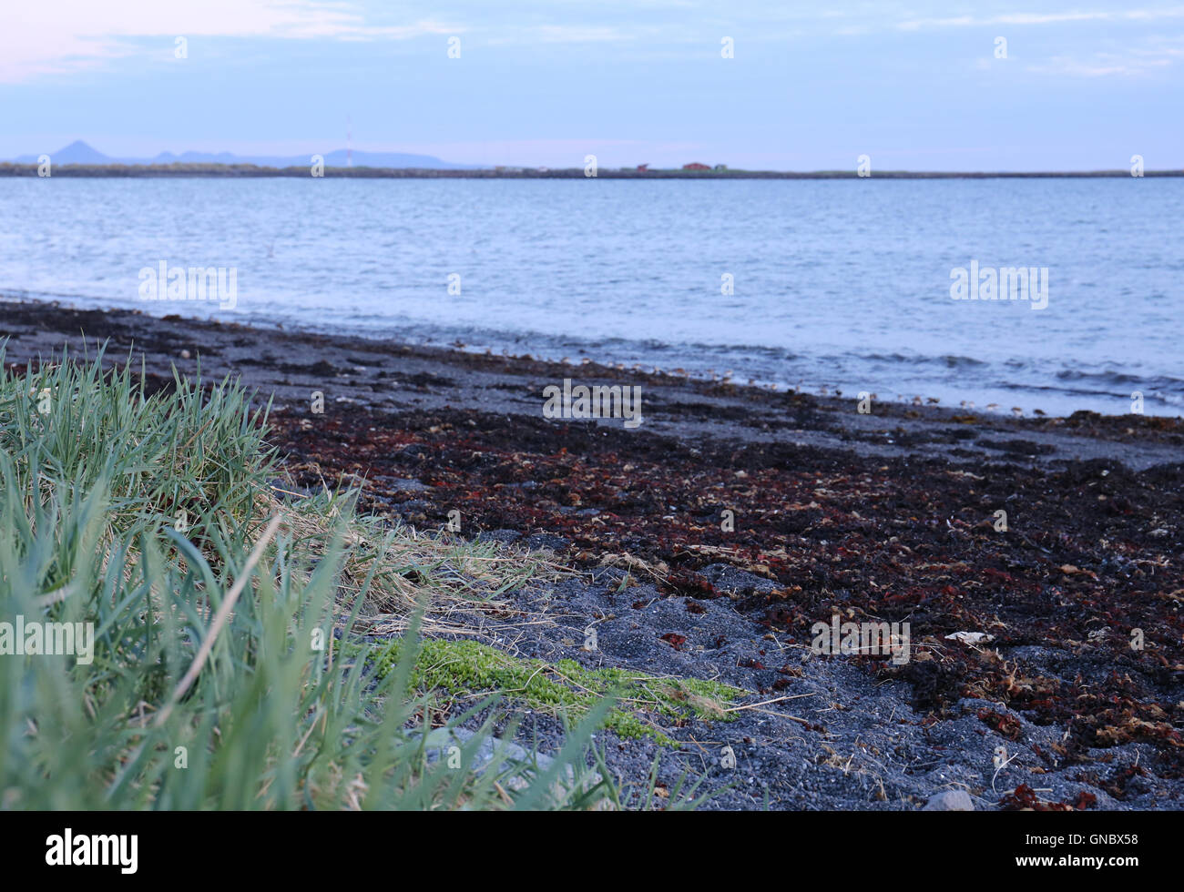 Icelandic blue hour, Iceland in summertime - Stock Image