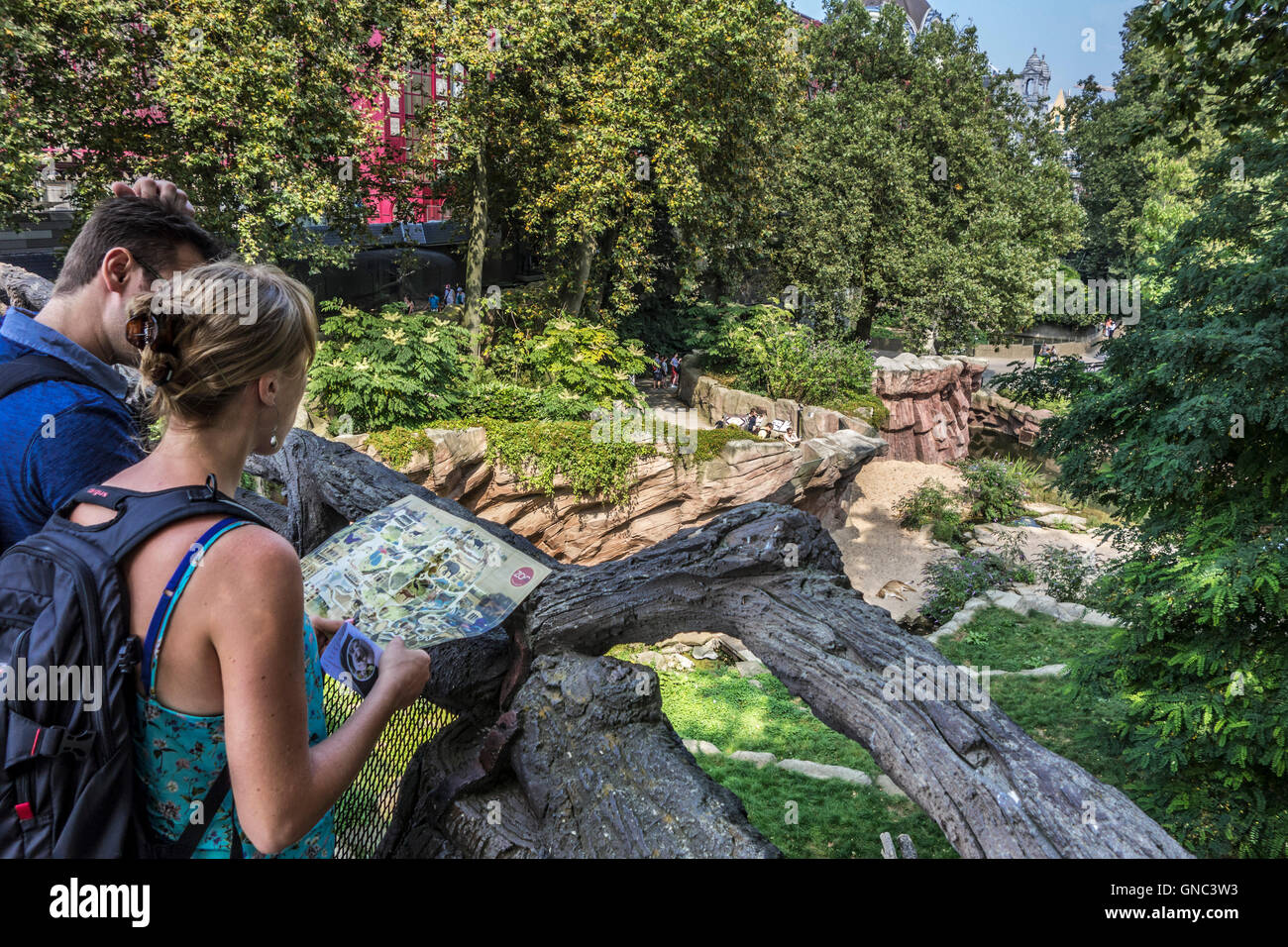 Visitors with map looking over the lion enclosure at the Antwerp Zoo, Belgium - Stock Image