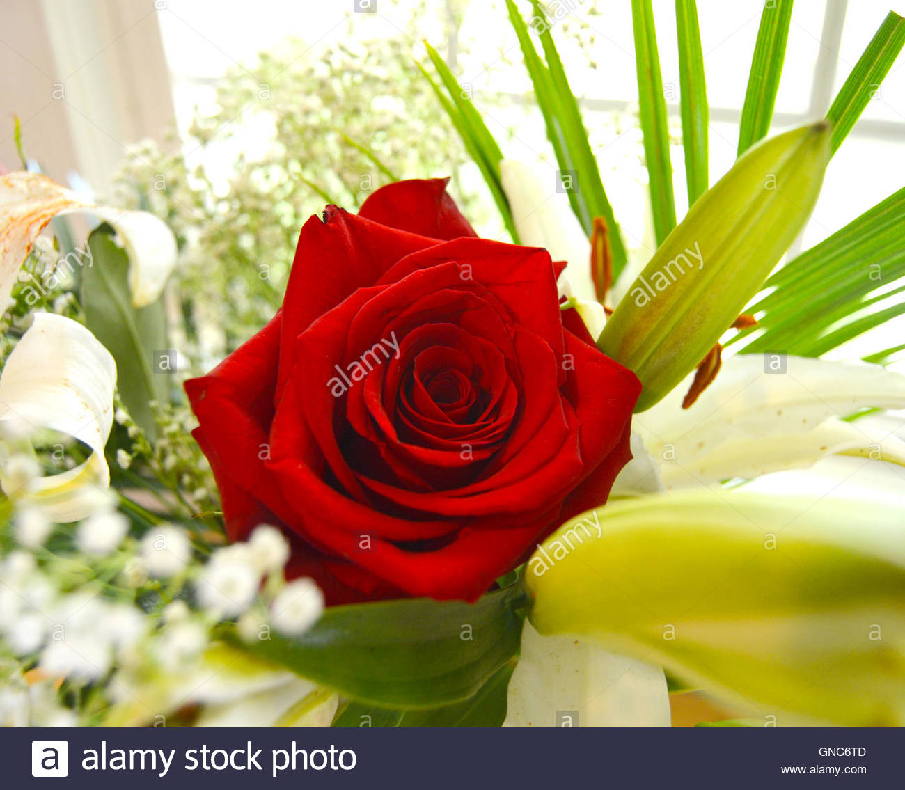 Red Rose In A Bouquet Of Flowers Stock Photos Red Rose In A