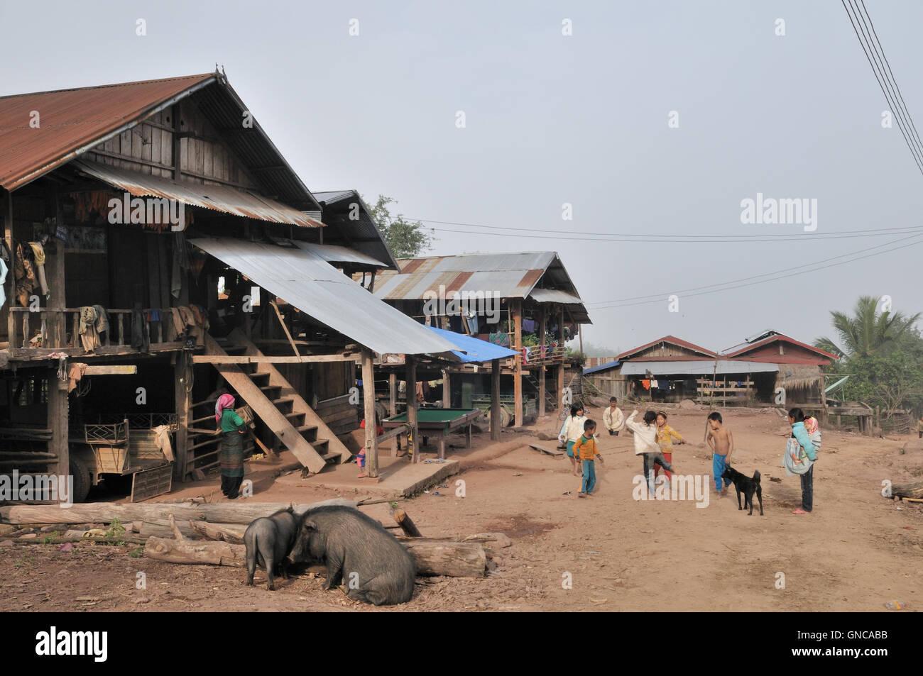 Akha Village Street With Stilt Houses Children And Pigs