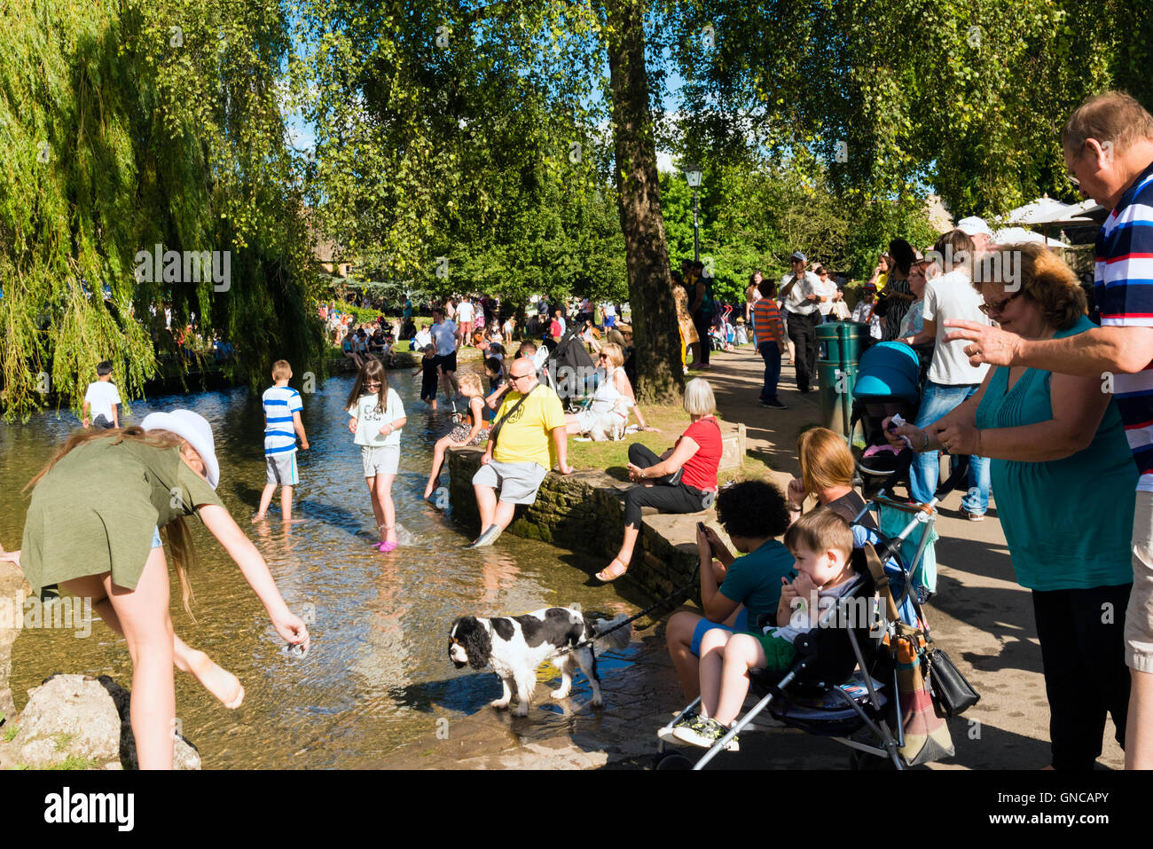 Children paddling in the River Windrush at Bourton-on-the-Water, Cotswolds, UK - Stock Image