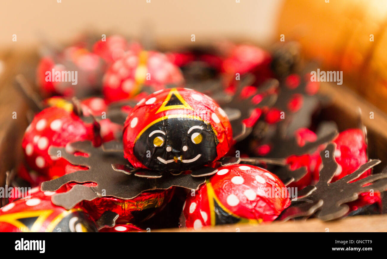 joyful fun chocoale ladybirds in foil and card base - Stock Image