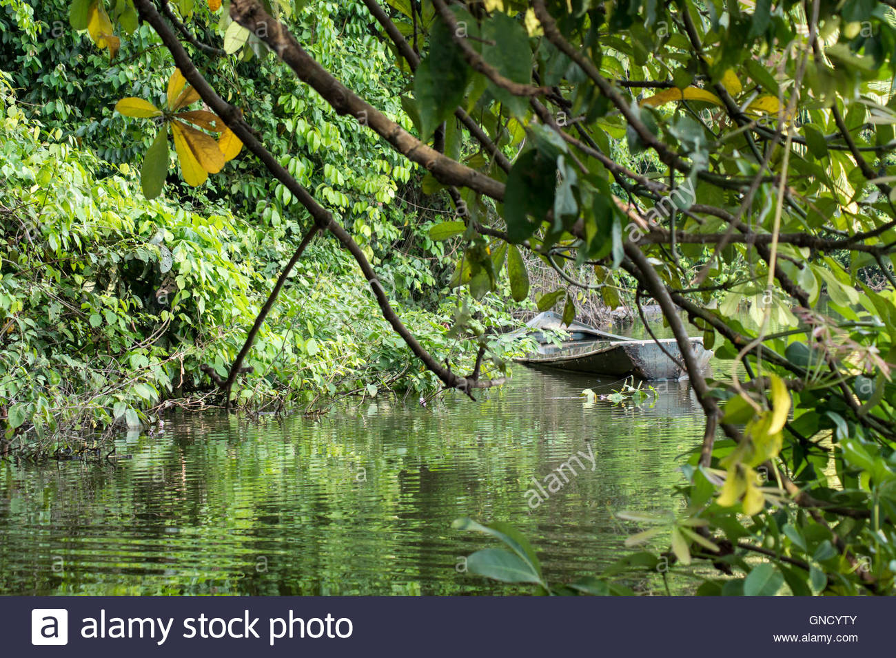 Aground or stranded boat at the shore of Lake Sandoval in Tambopata Reserve, Madre de Dios, Peru. Amazon rainforest. - Stock Image