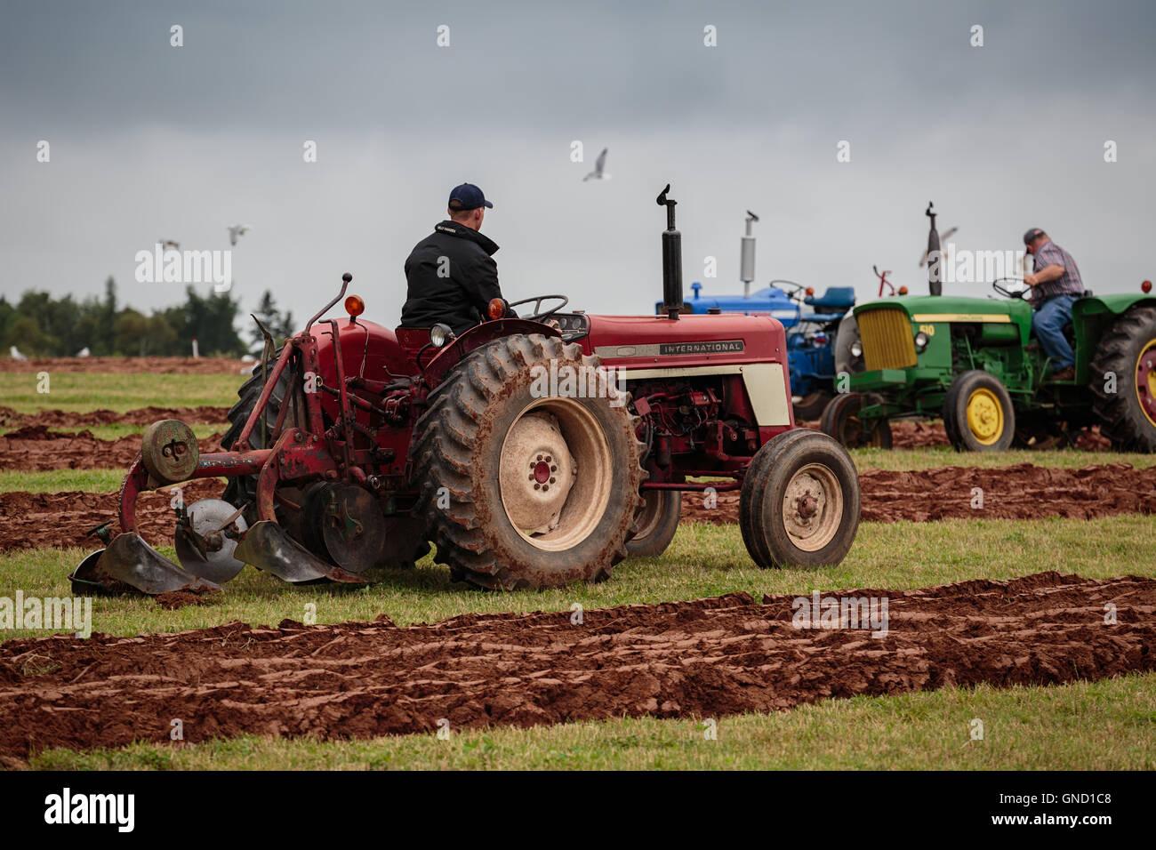 Prince Edward Island, Canada, Aug 27,2016. Competitors at the Prince Edward Island Plowing Match & Agricultural - Stock Image