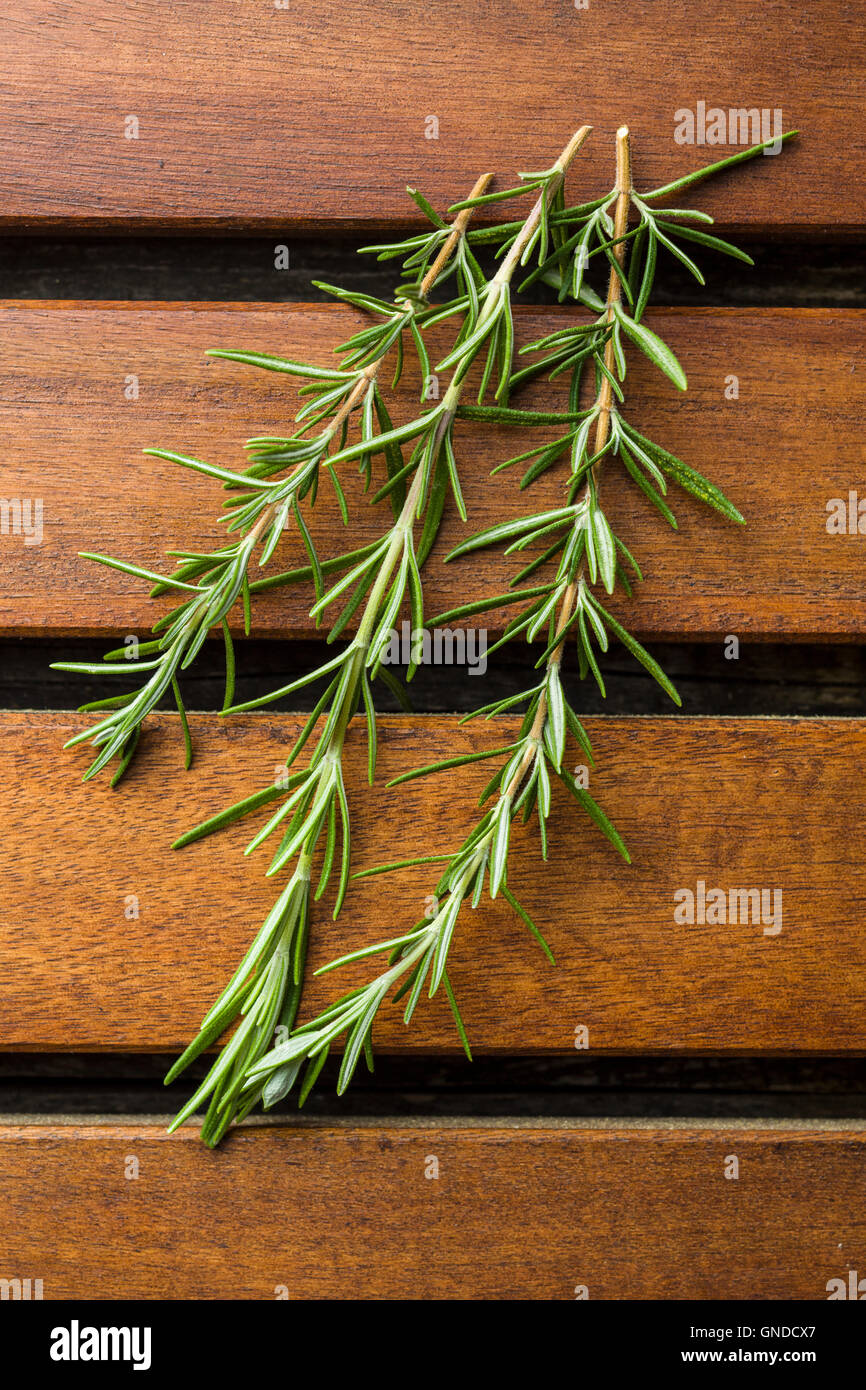 Branch of green rosemary on wooden table. - Stock Image