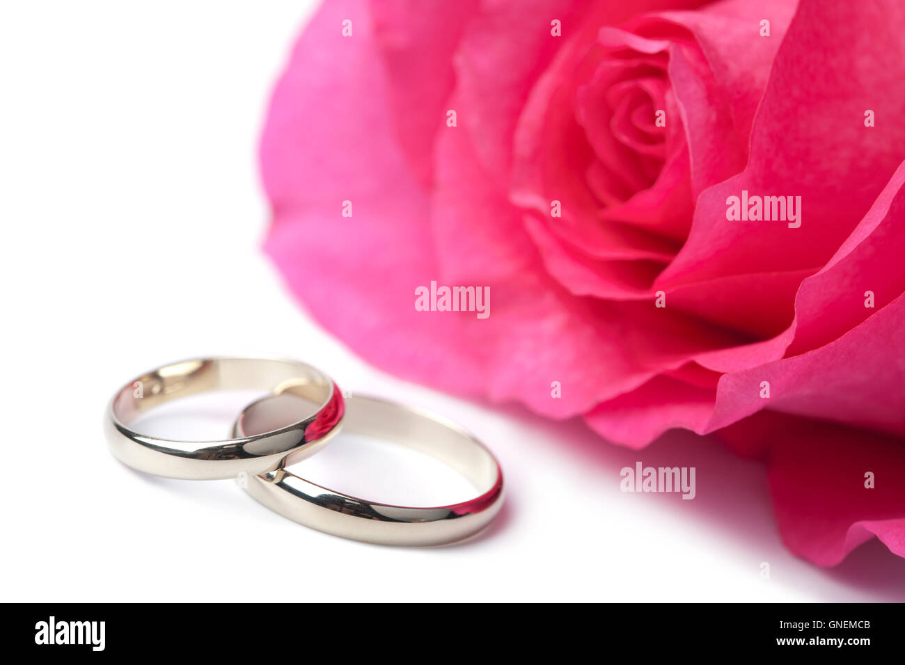 Gold wedding rings and pink rose isolated Stock Photo: 116493339 - Alamy