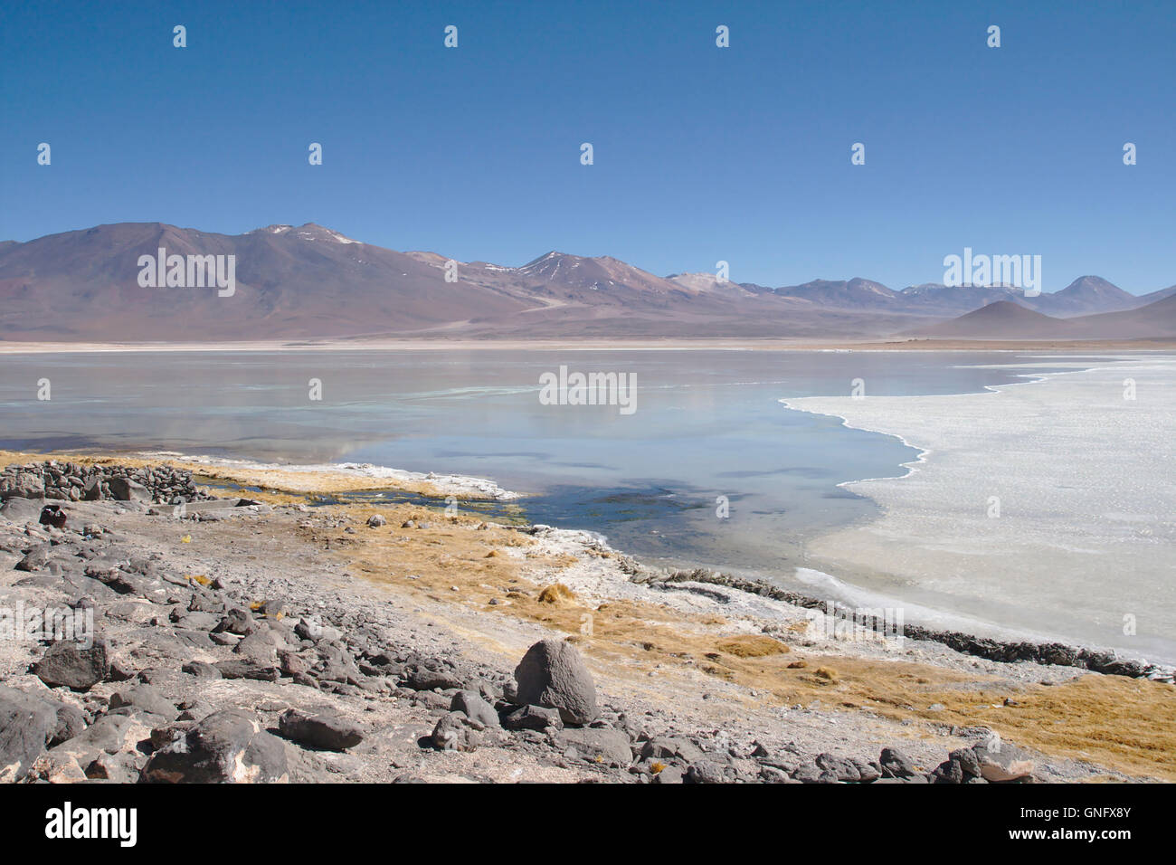 Laguna Blanca with ice sheet, Andes in Southwestern Bolivia - Stock Image