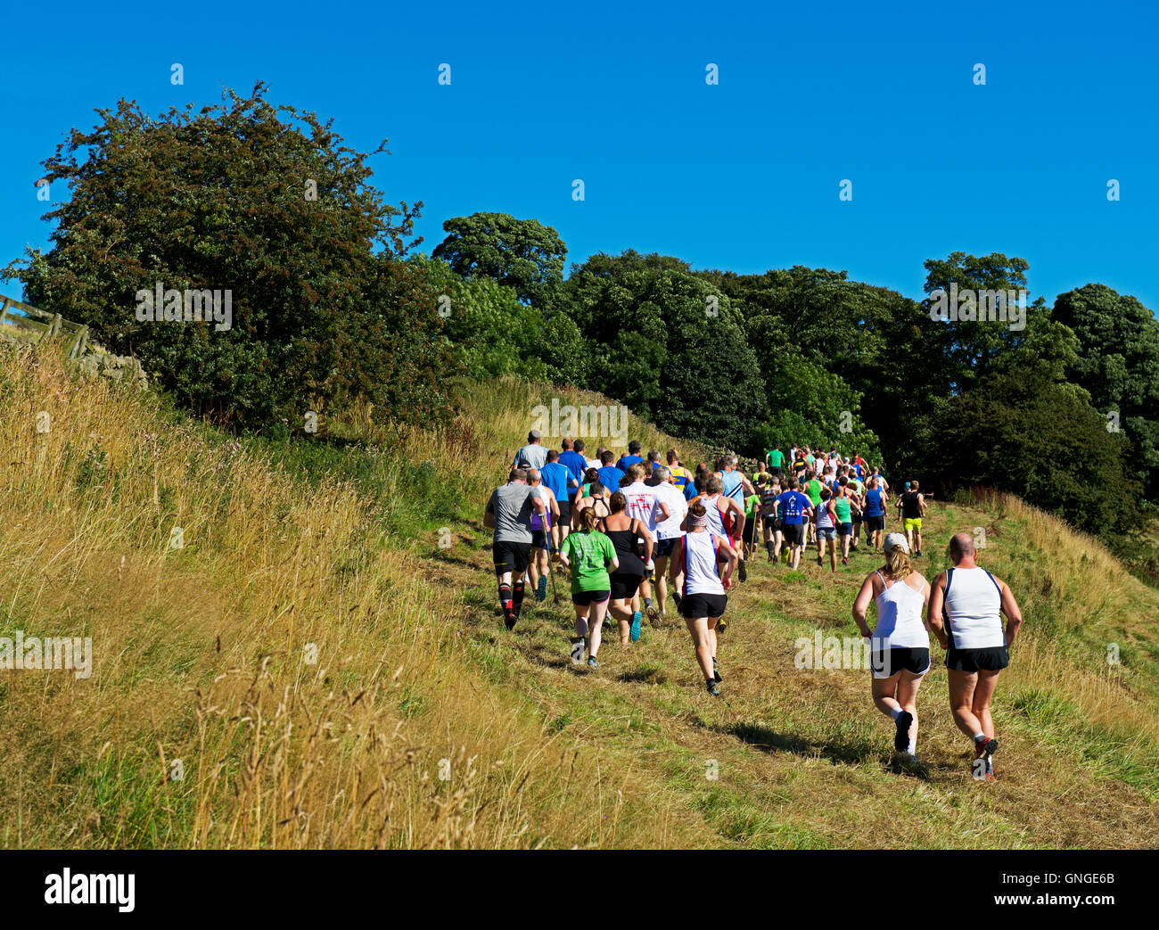 Fell runners at Reeth Show, Swaledale, North Yorkshire, England UK - Stock Image
