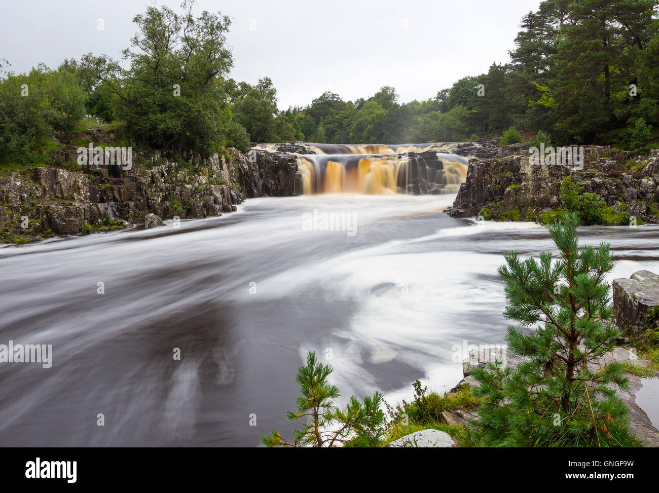Low Force on a Rainy Summer Day, Bowlees, Teesdale, County Durham, UK - Stock Image