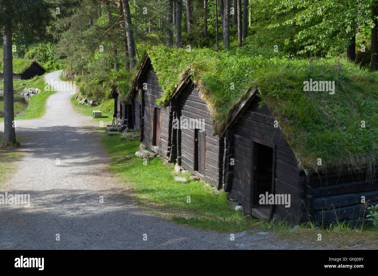 Old wooden buildings at the Sunnmore Open Air Museum, Alesund, Norway - Stock Image