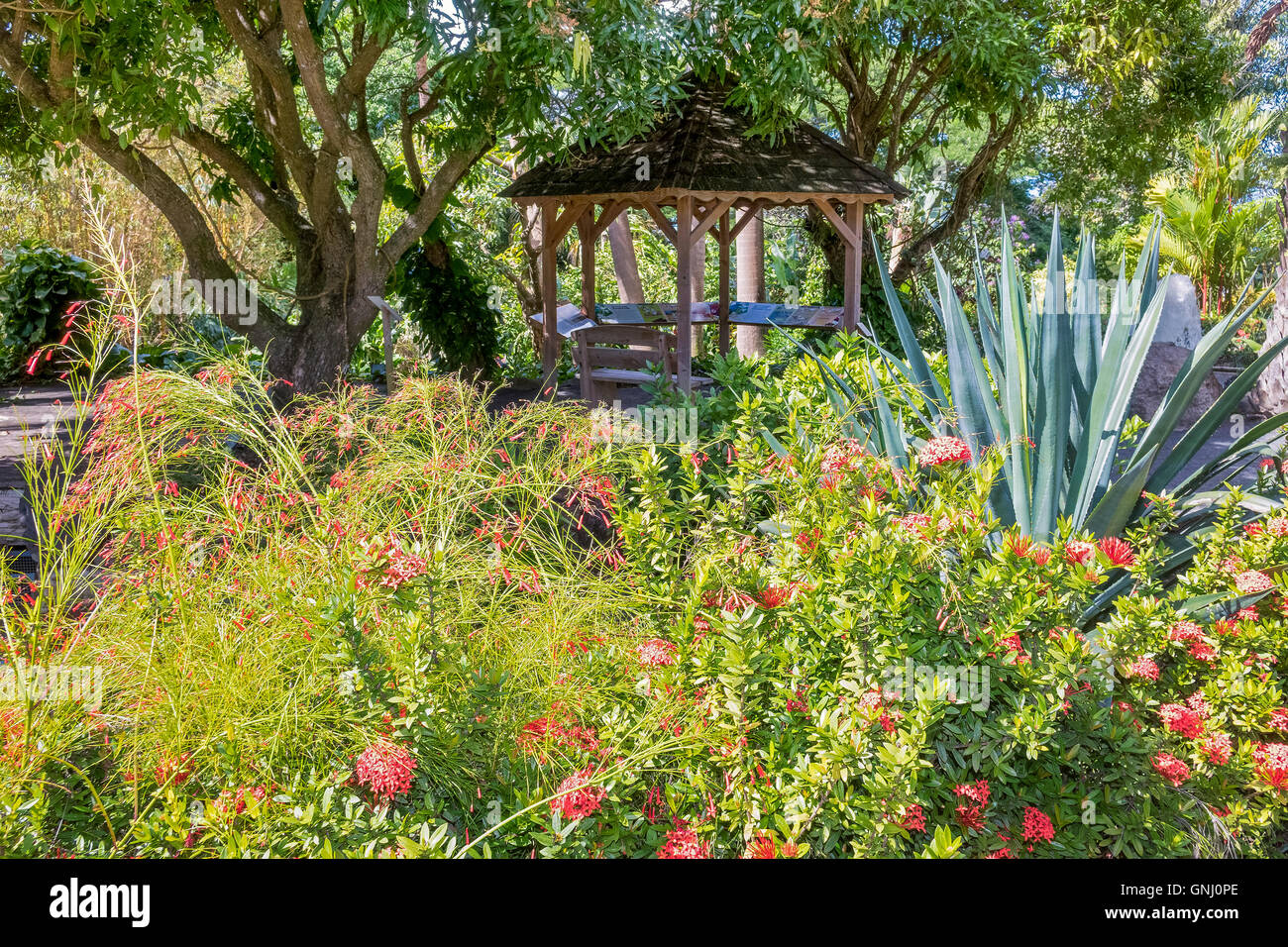 Summer House In the Garden Balata Botanical Gardens Guadeloupe West Indies - Stock Image