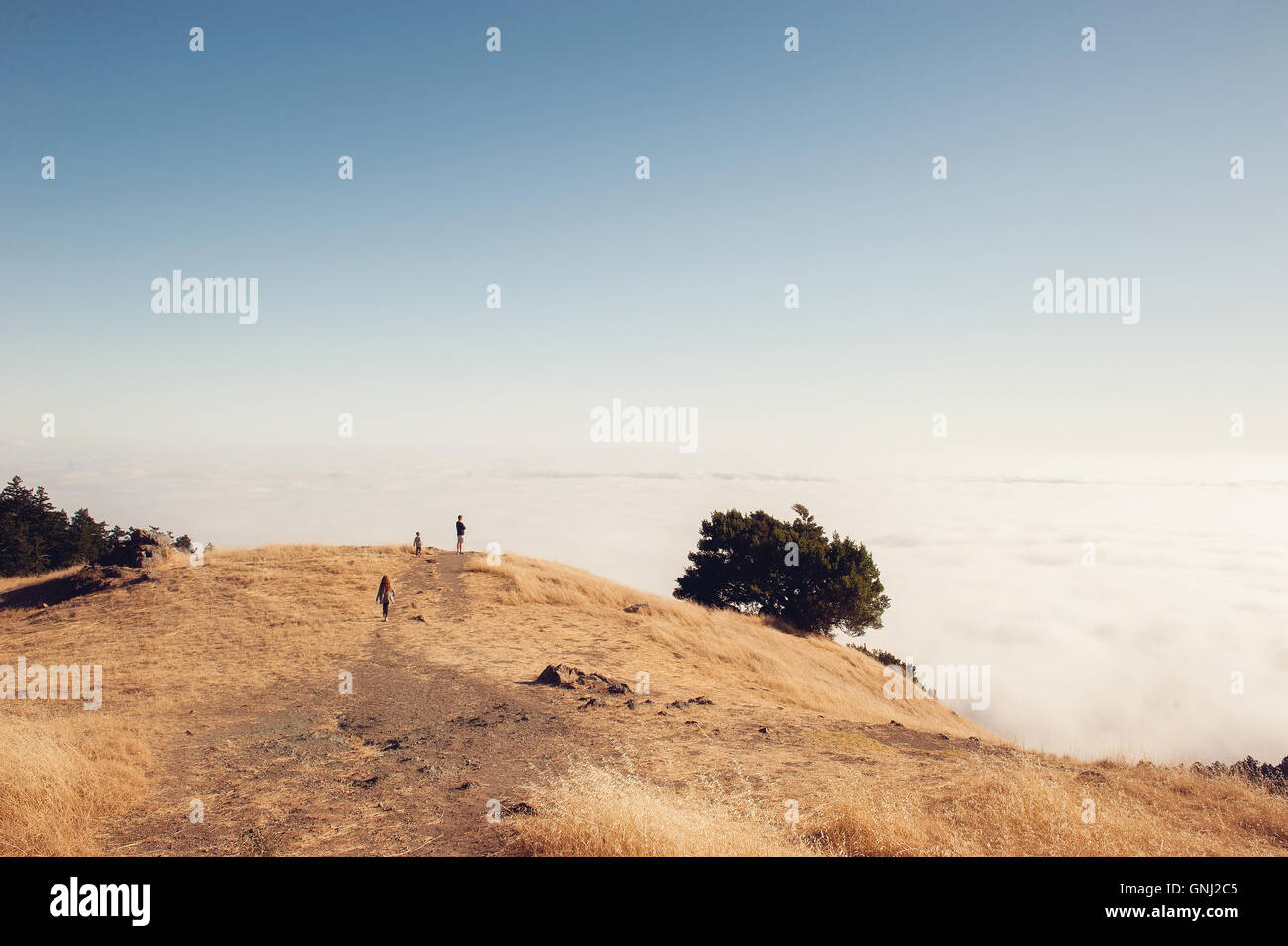 Father and two children hiking, Mount Tamalpais, California, United States Stock Photo