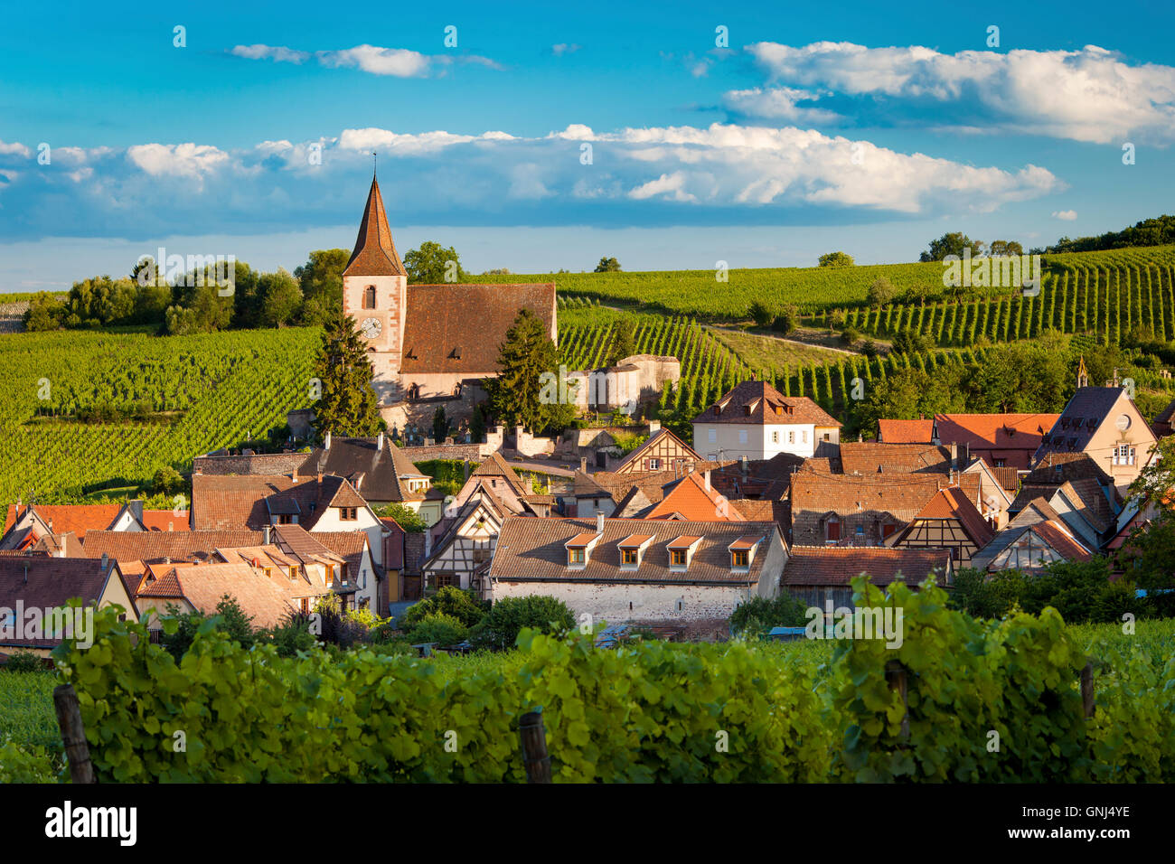 View over town of Hunawihr along the wine route, Alsace, Haut-Rhin, France - Stock Image