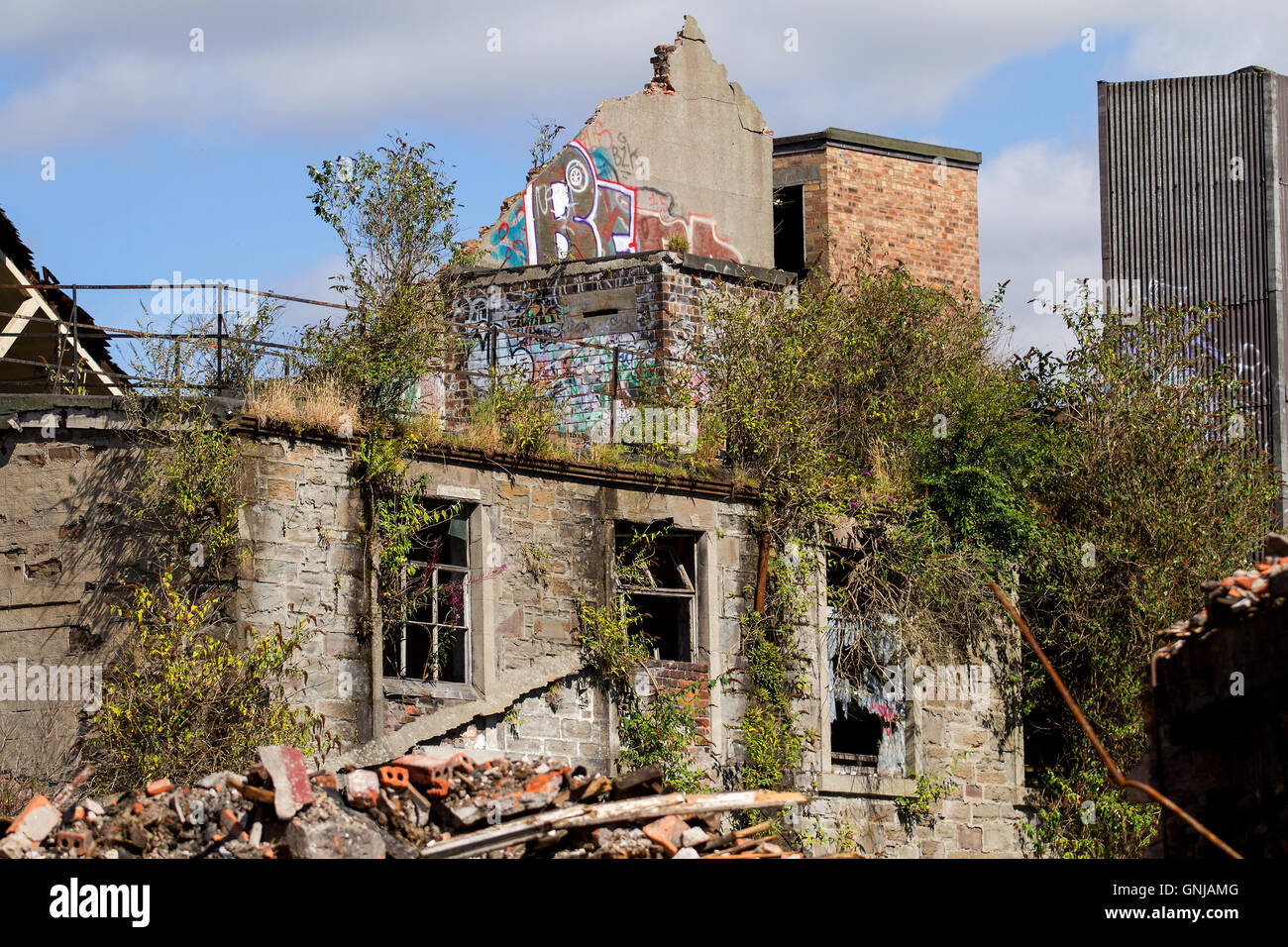 An old derelict 1800`s Queen Victoria Works flax mill building lay in ruins along 203 Brook Street in Dundee, UK - Stock Image