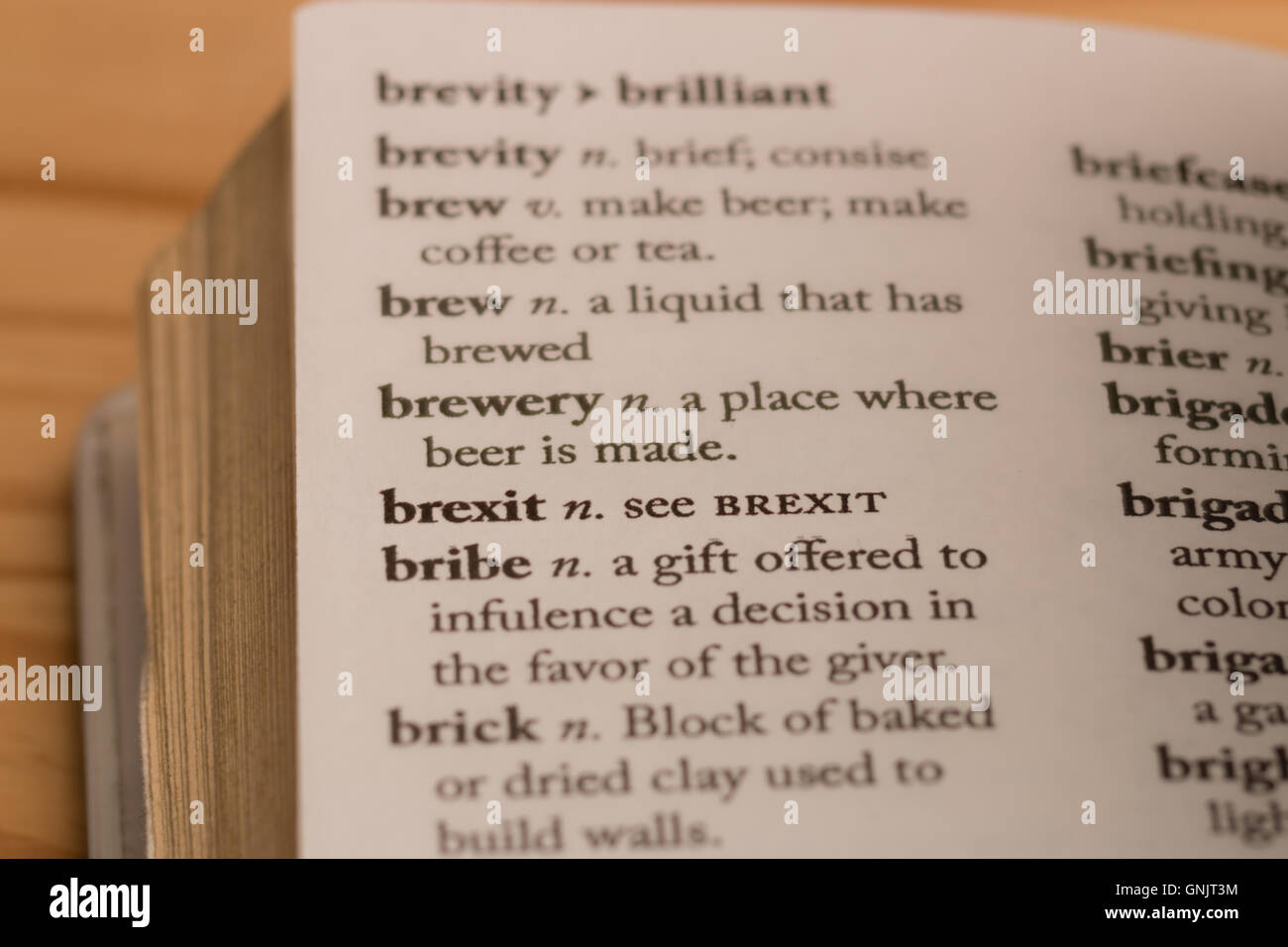 A 'dictionary' definition showing 'Brexit means brexit' - Stock Image