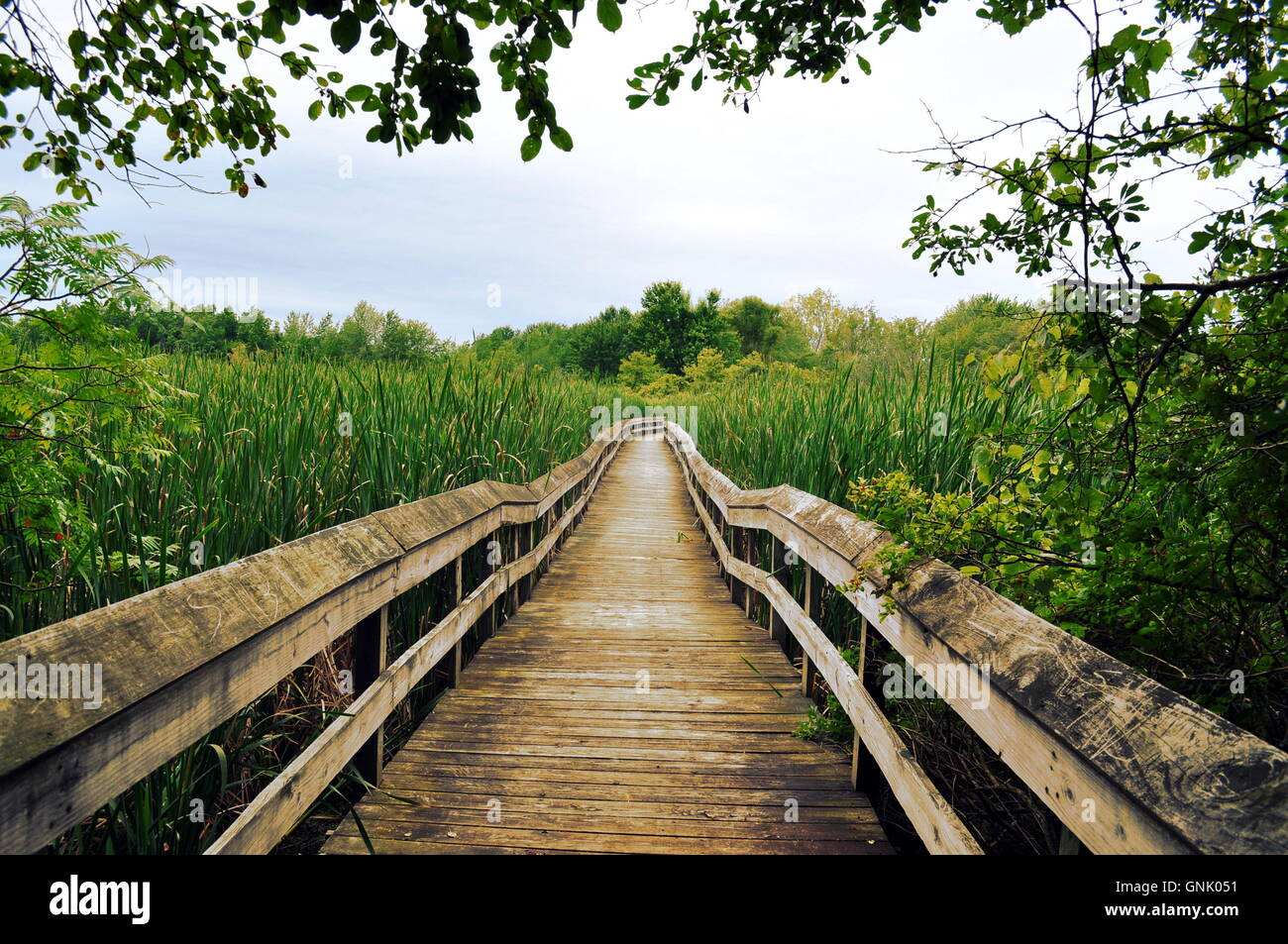 Adventure lays before you. What lies beyond the bridge? - Stock Image