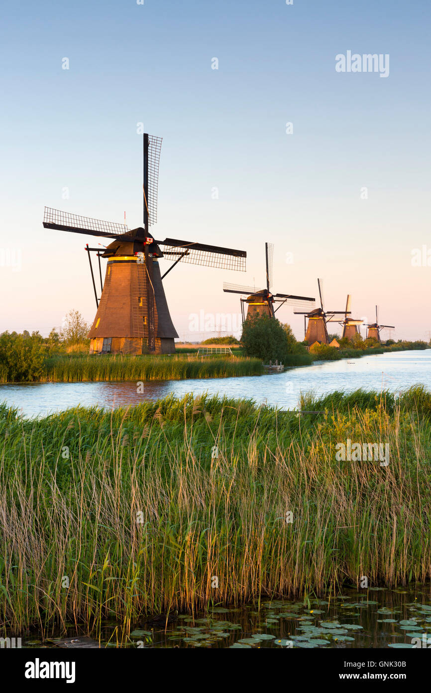 Group of authentic windmills at Kinderdijk UNESCO World Heritage Site, polder and dyke, Holland, The Netherlands - Stock Image