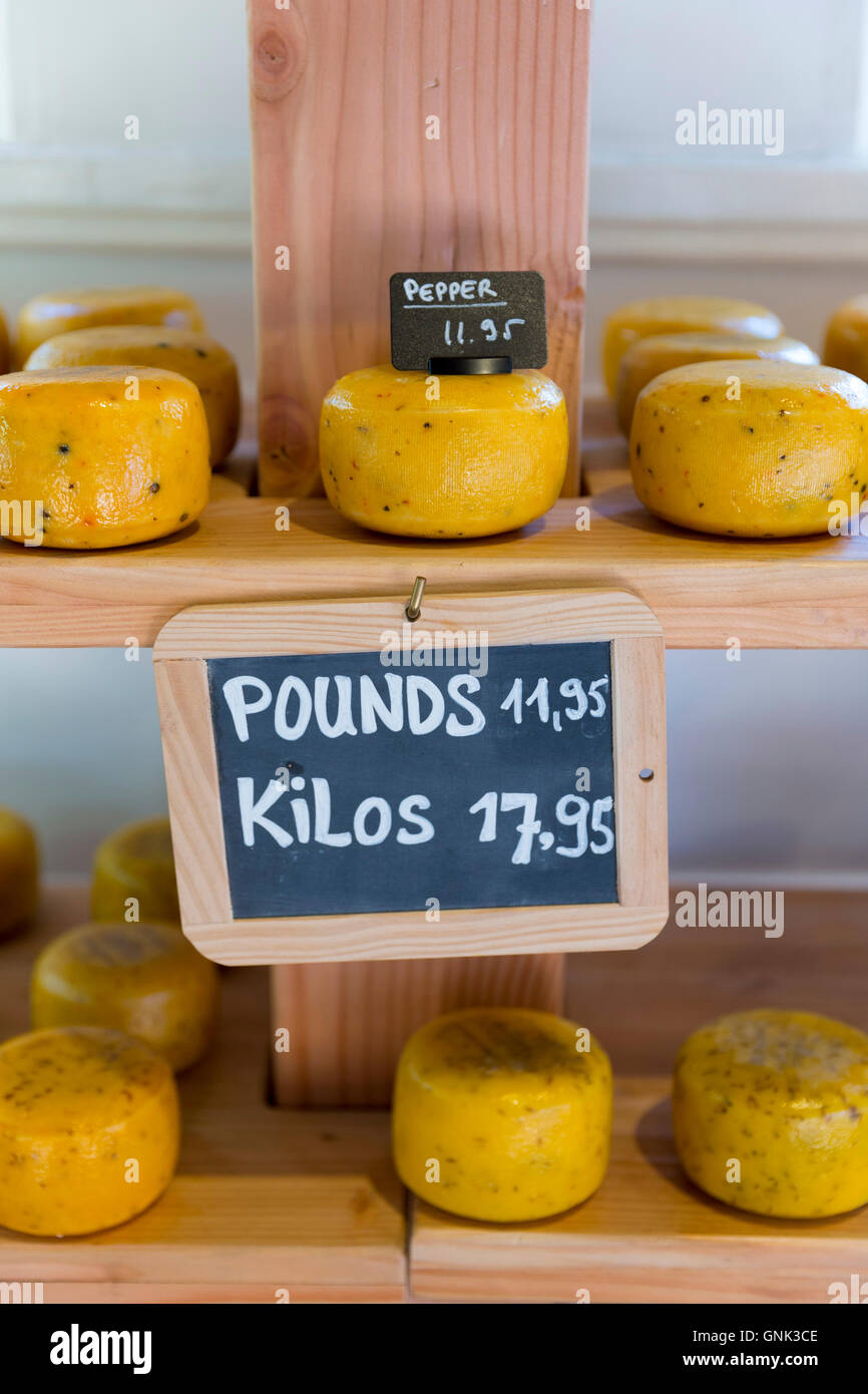 Gouda cheese prices Metric Kilos and Imperial Pounds in Dutch cheese shop, Jordaan district, Amsterdam, Holland - Stock Image